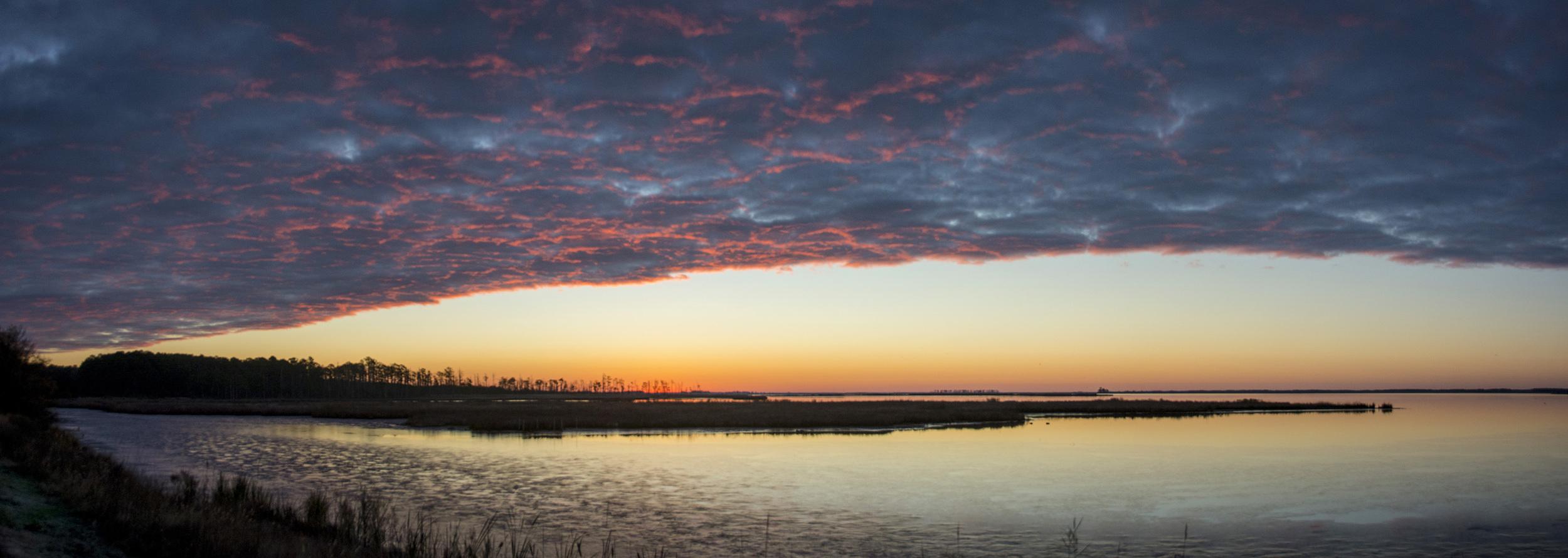 Sunrise Pano in Blackwater NWR