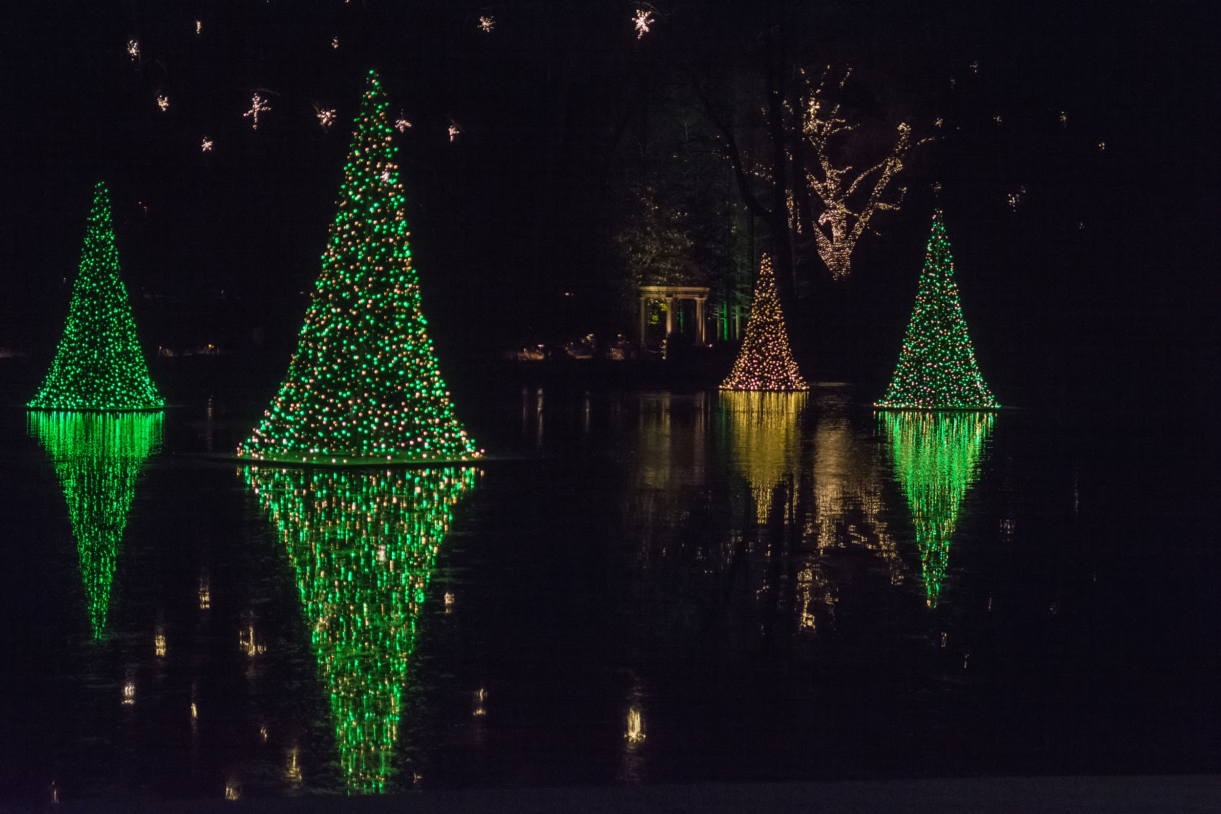 Lakeside tree lights at Longwood Gardens