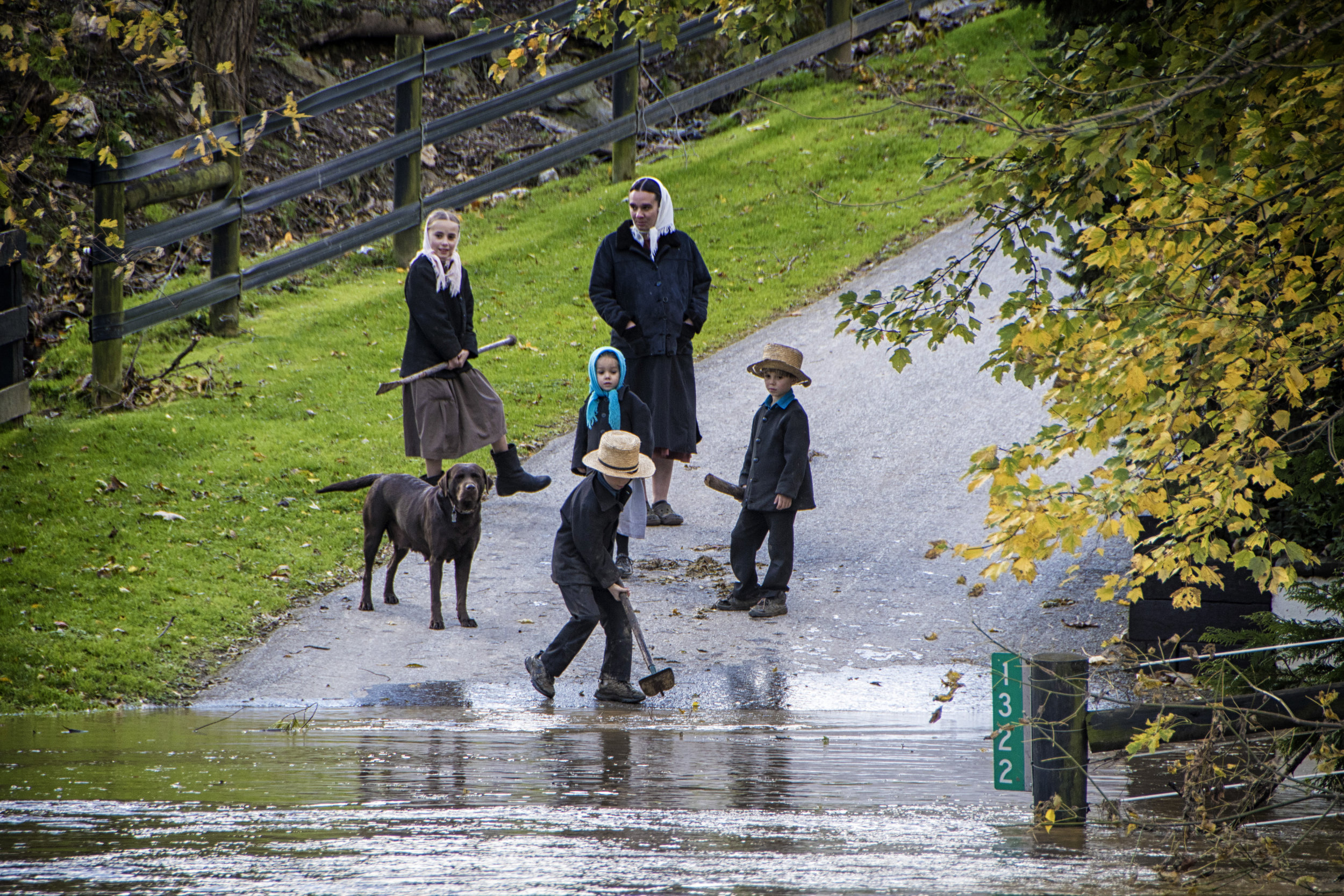 Amish with flooded drive, Strasburg, Pa.