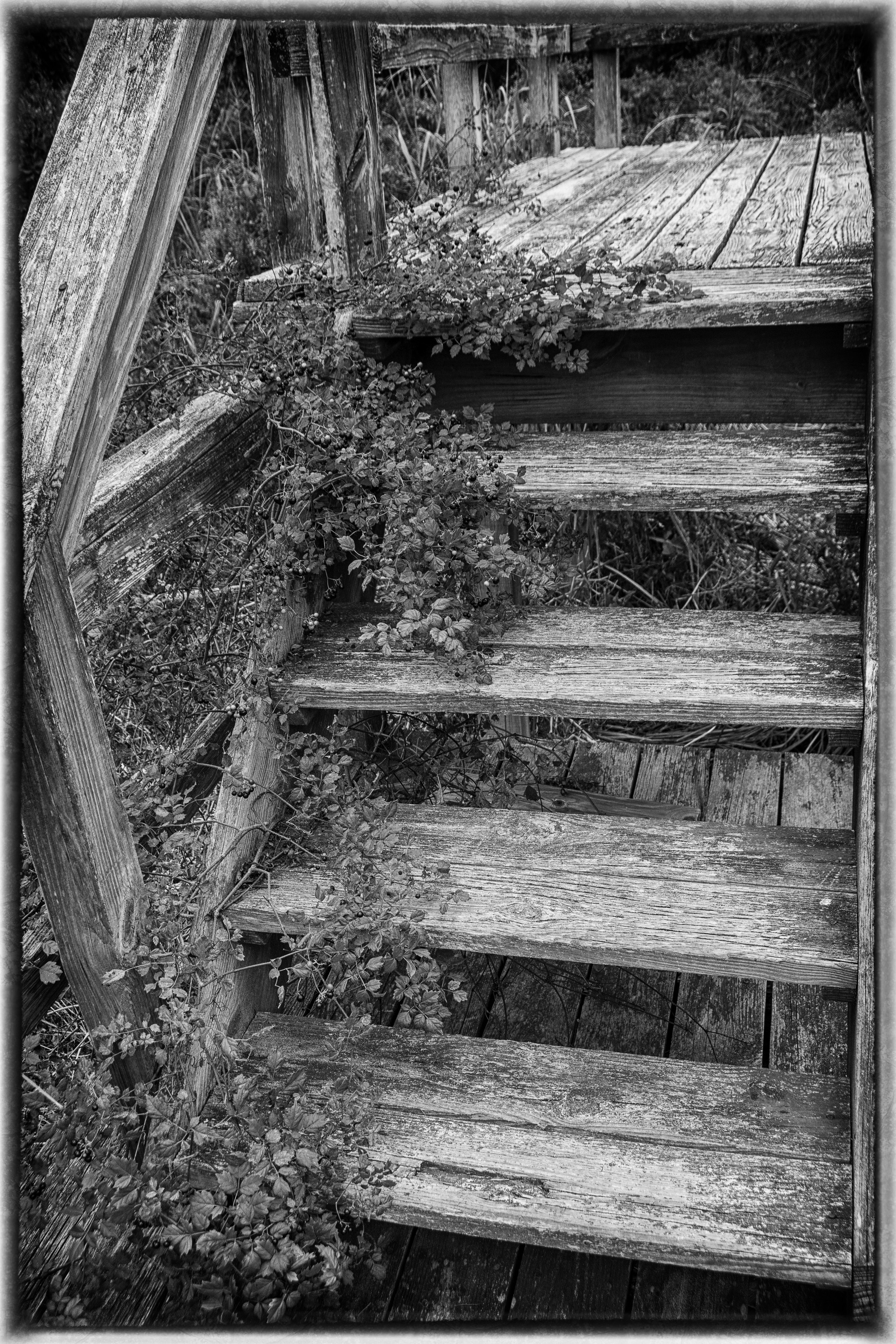 stairs, OBX