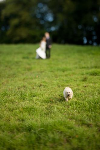 Very-small-wedding-110.jpg