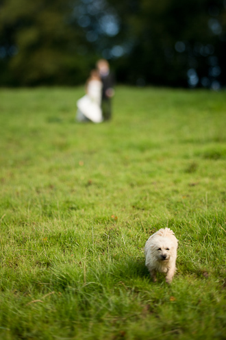 Very-small-wedding-111.jpg