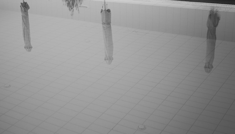 20120806 - Reflections (1500) -4.jpg