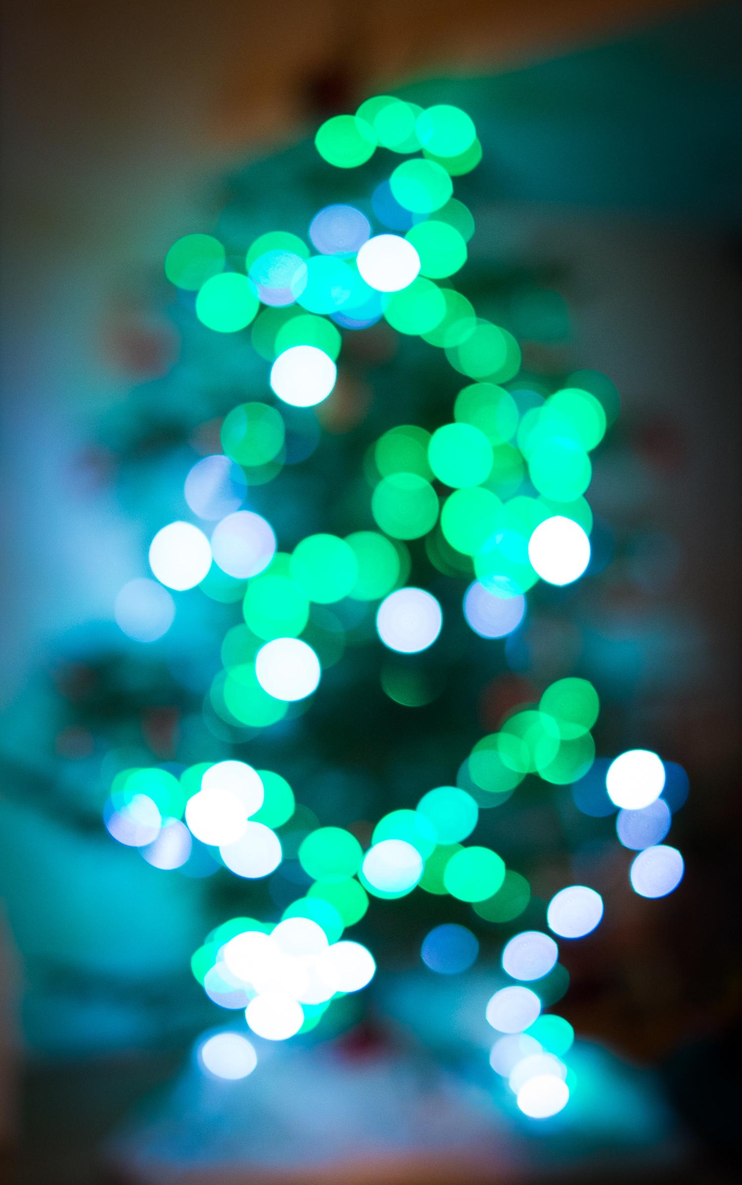 Christmas Tree (London, 2013)