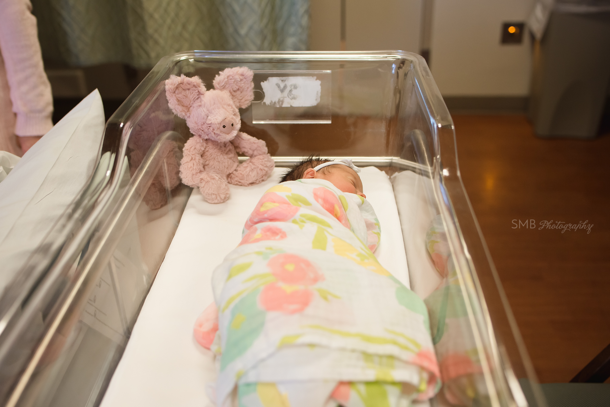 Newborn baby girl wrapped in bassinet with stuffed animal