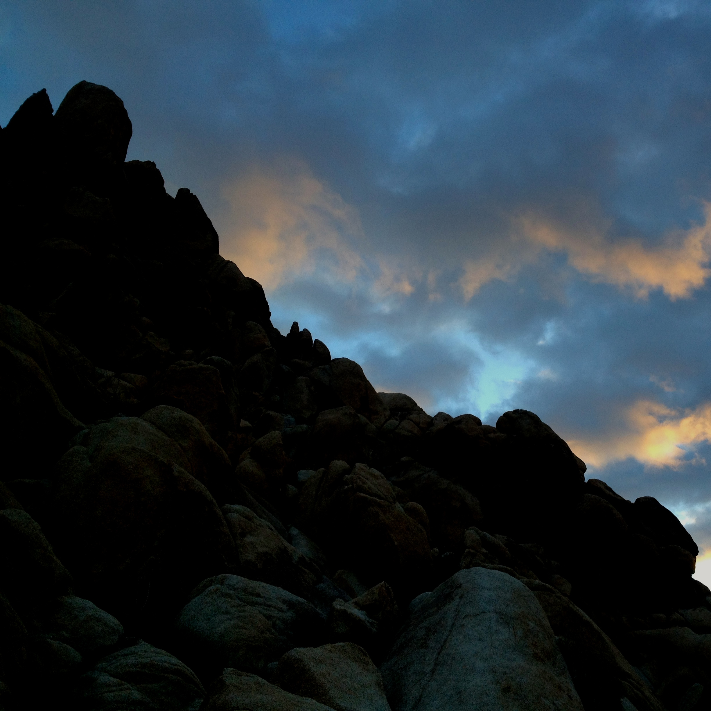 Dawn, Joshua Tree, California