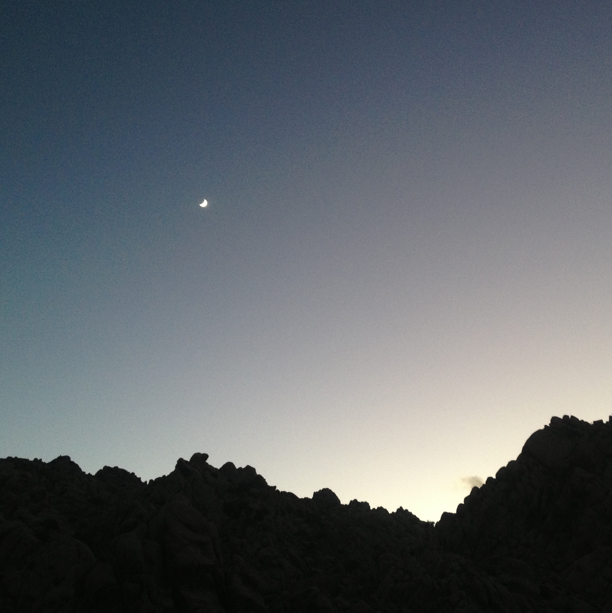 Moonrise, Joshua Tree, California