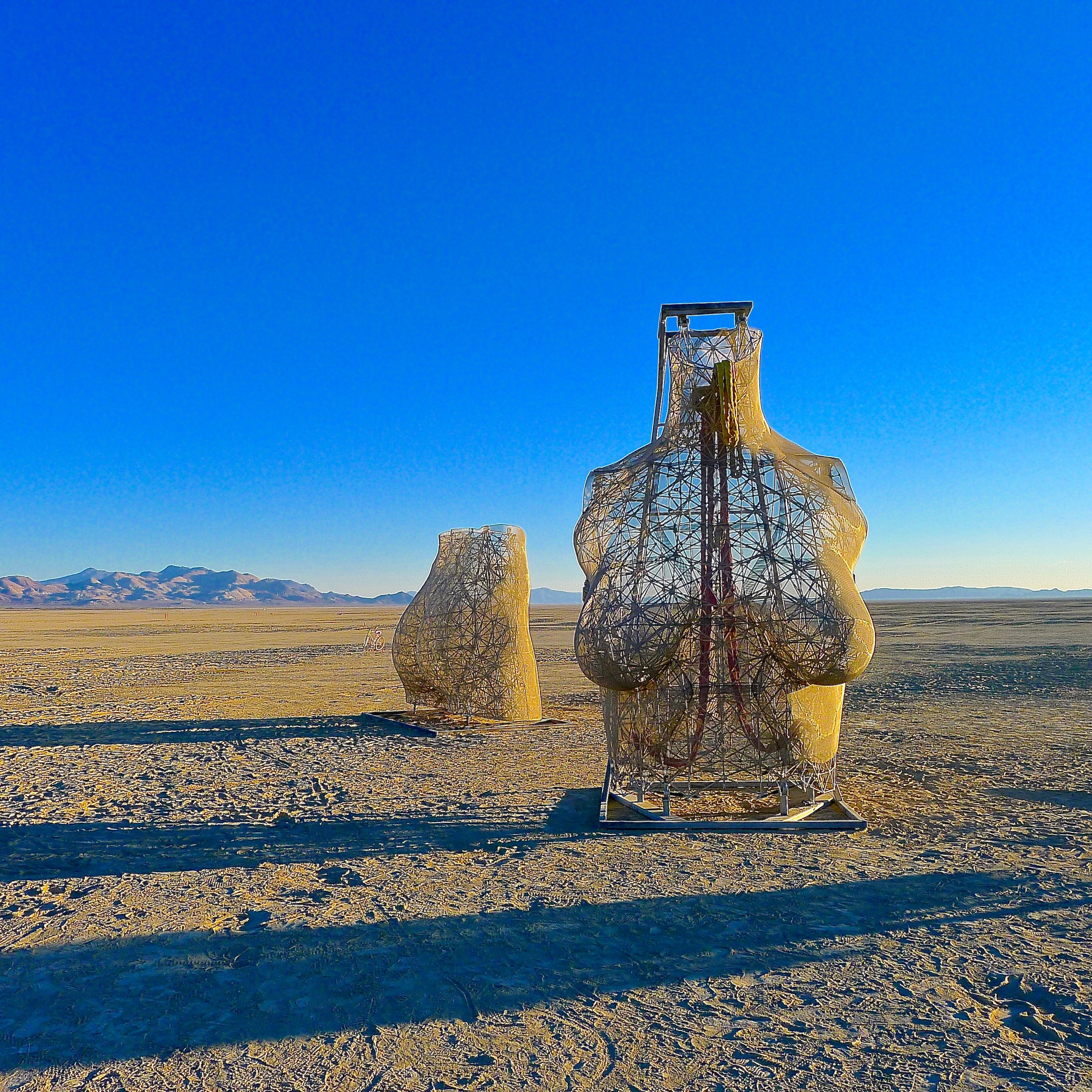 rEvolution 2 BurningMan 2015 (Marco Cochrane