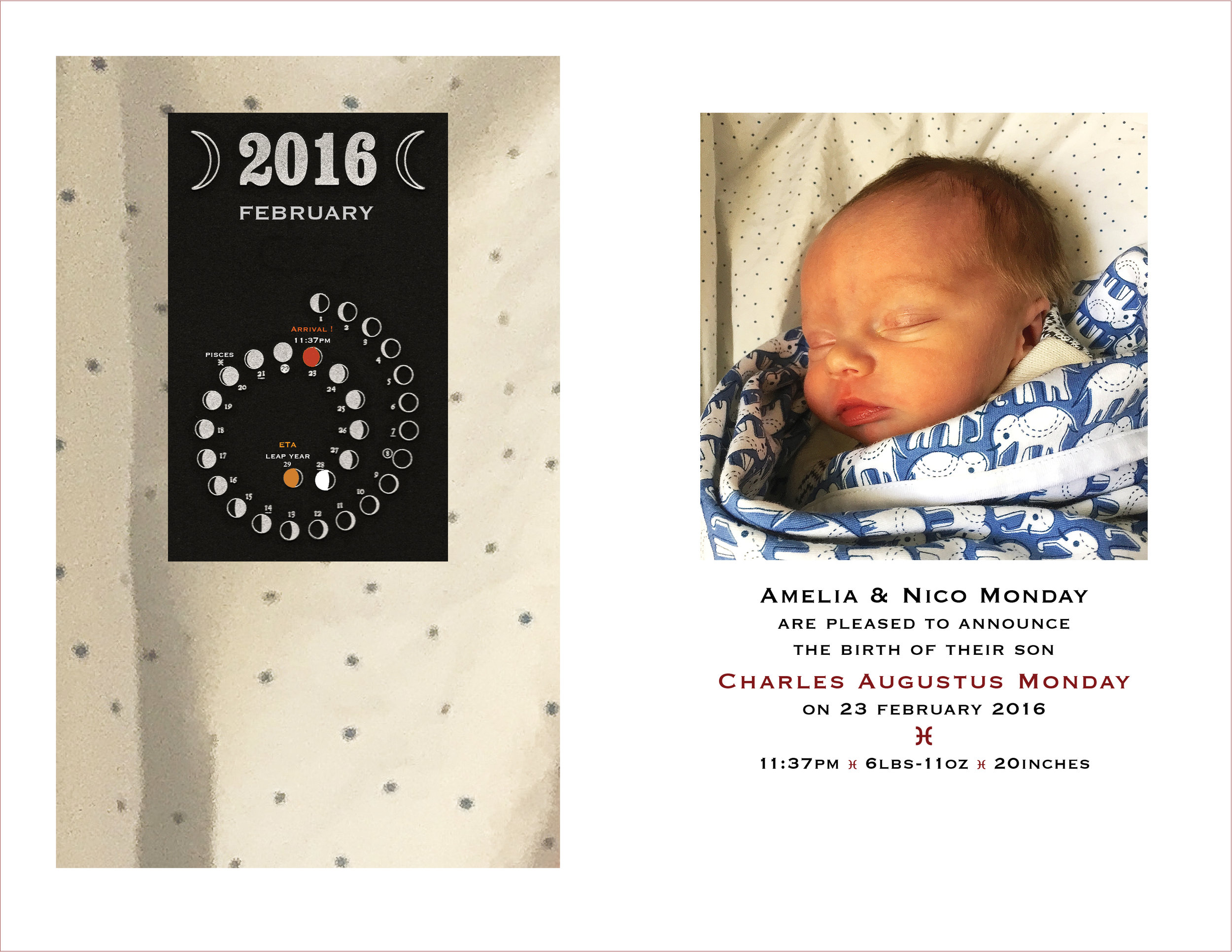 Birth Announcement  : Chas. Augustus Monday