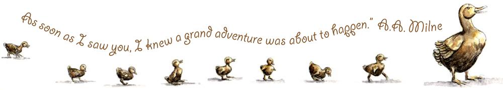 ducklings-adventure.jpg