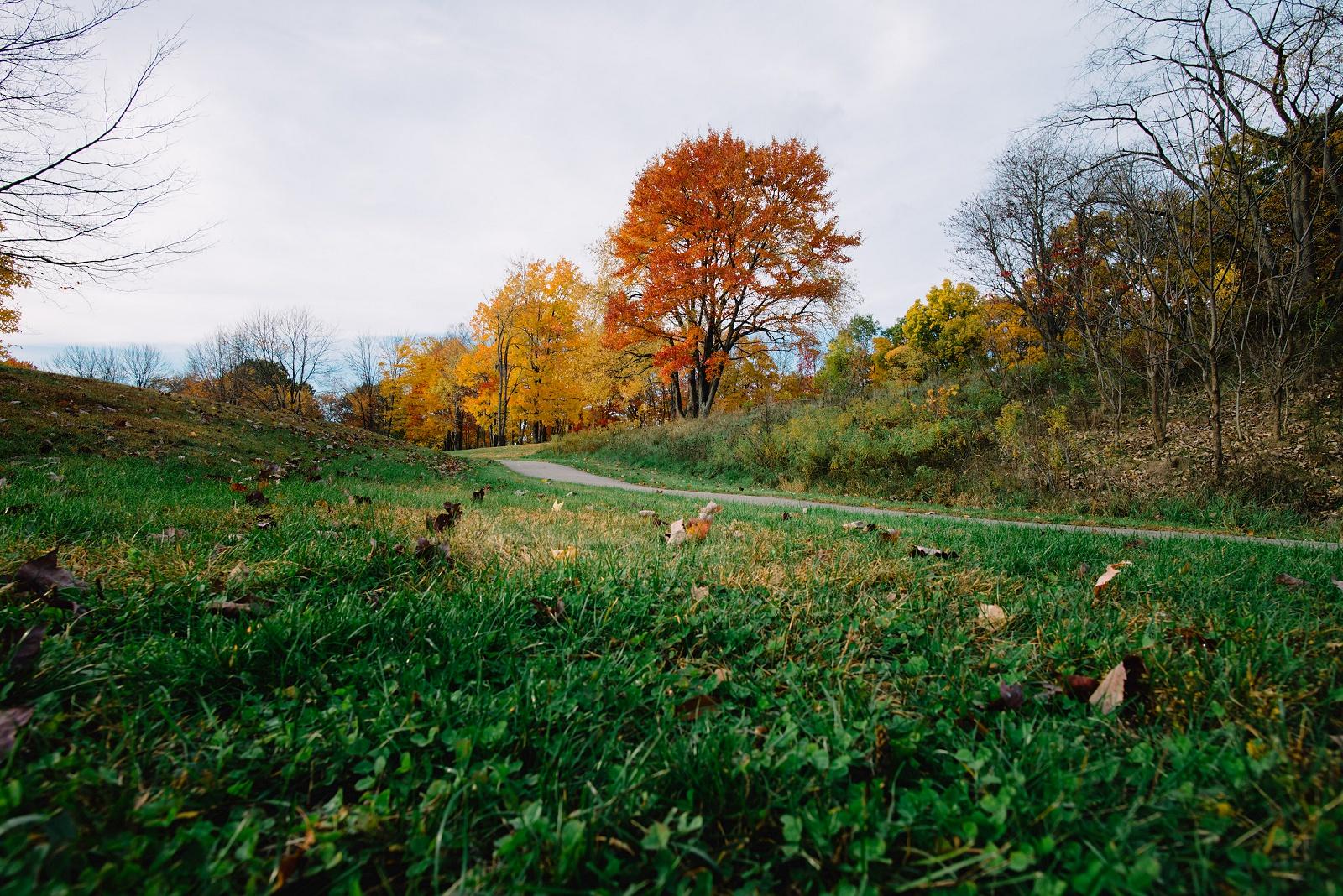 Sandrachile | Pittsburgh photographer