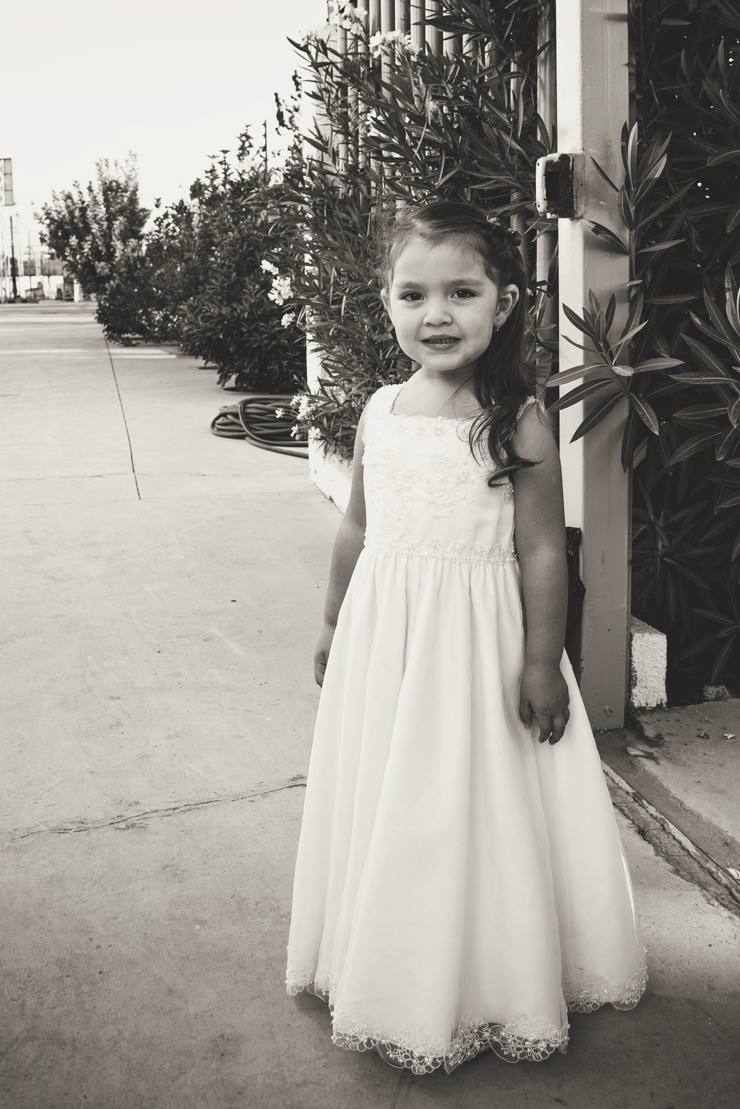 wedding-princess