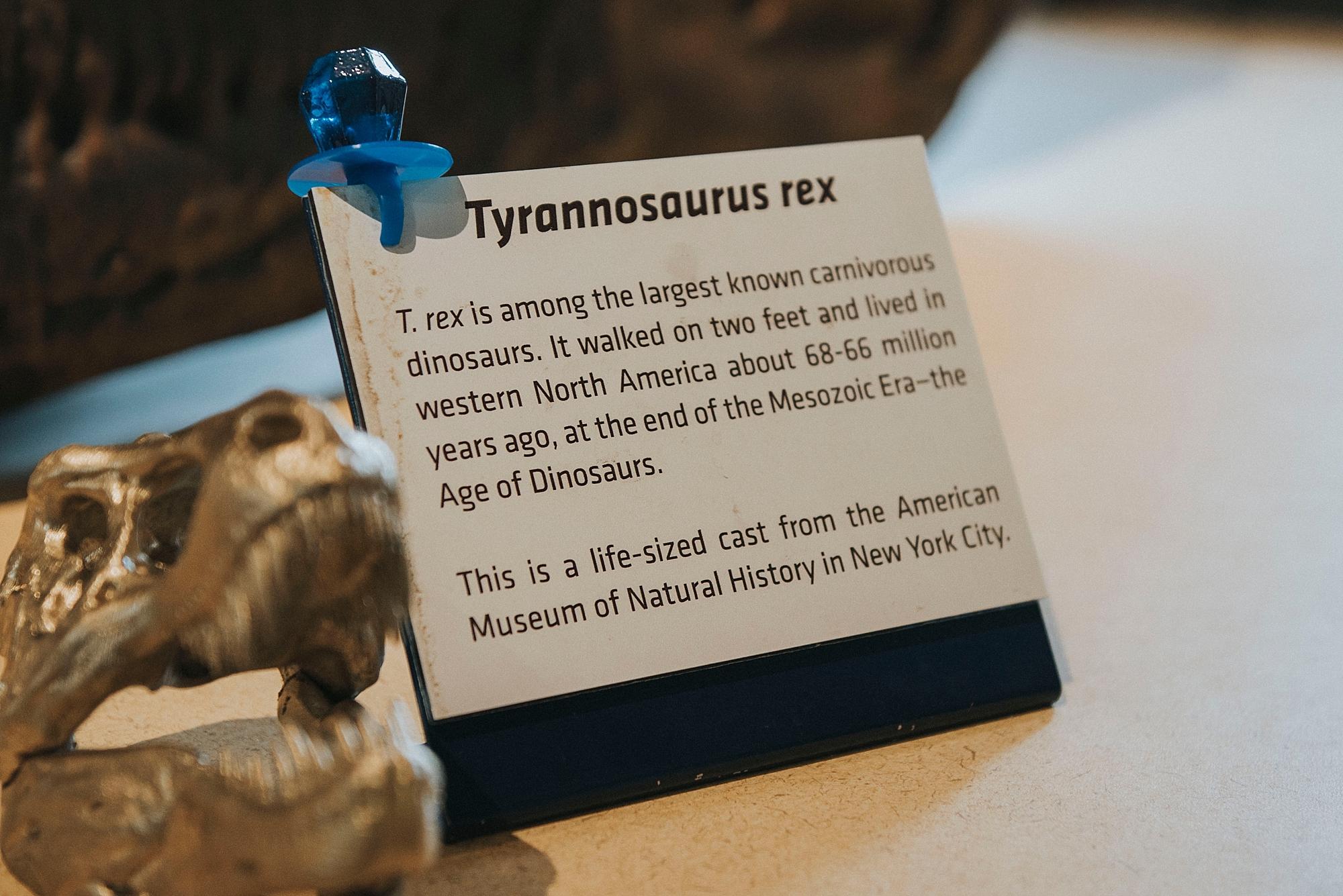 Geek Proposal, Carnegie Museum Pittsburgh