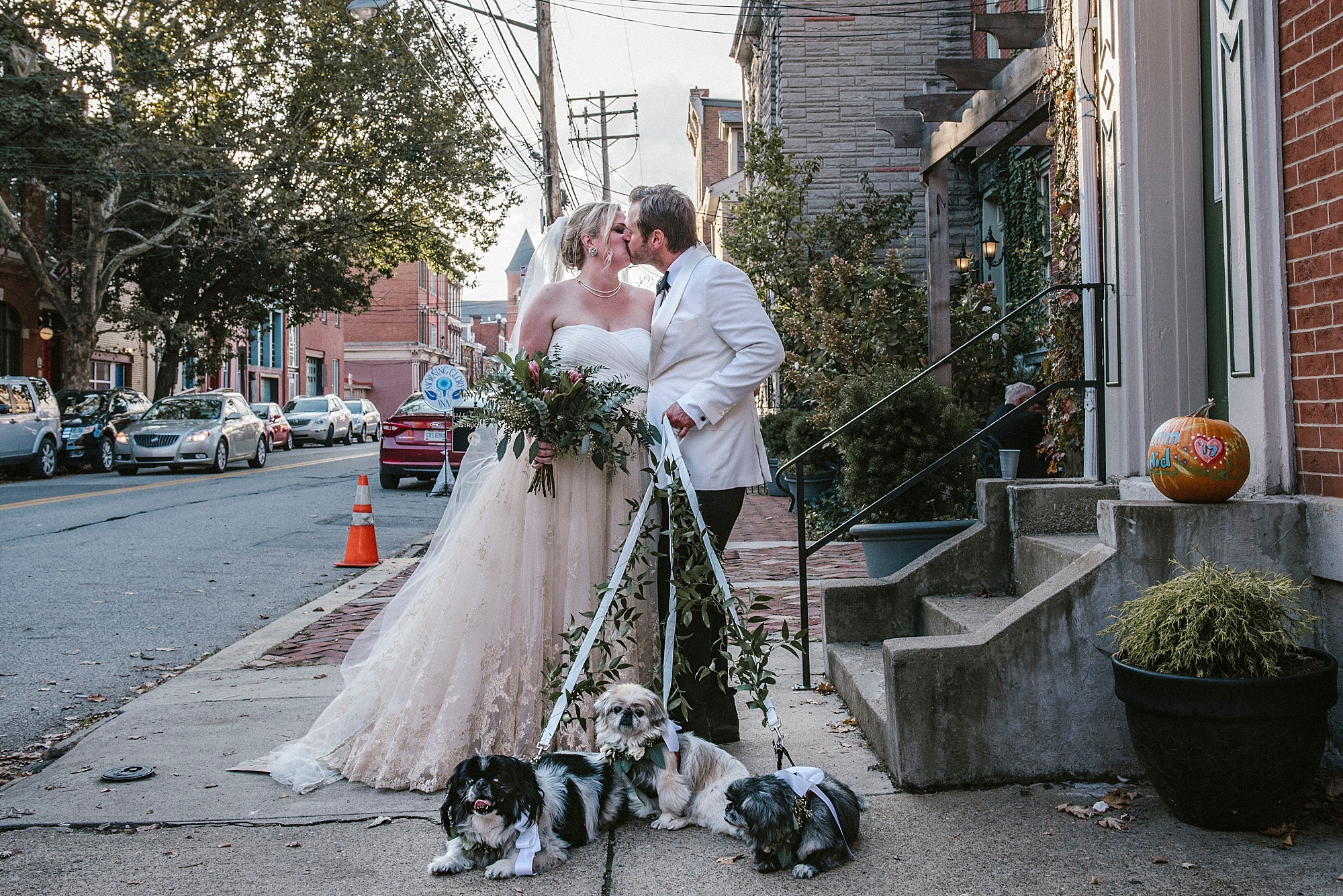 Pittsburgh ethical wedding with dogs