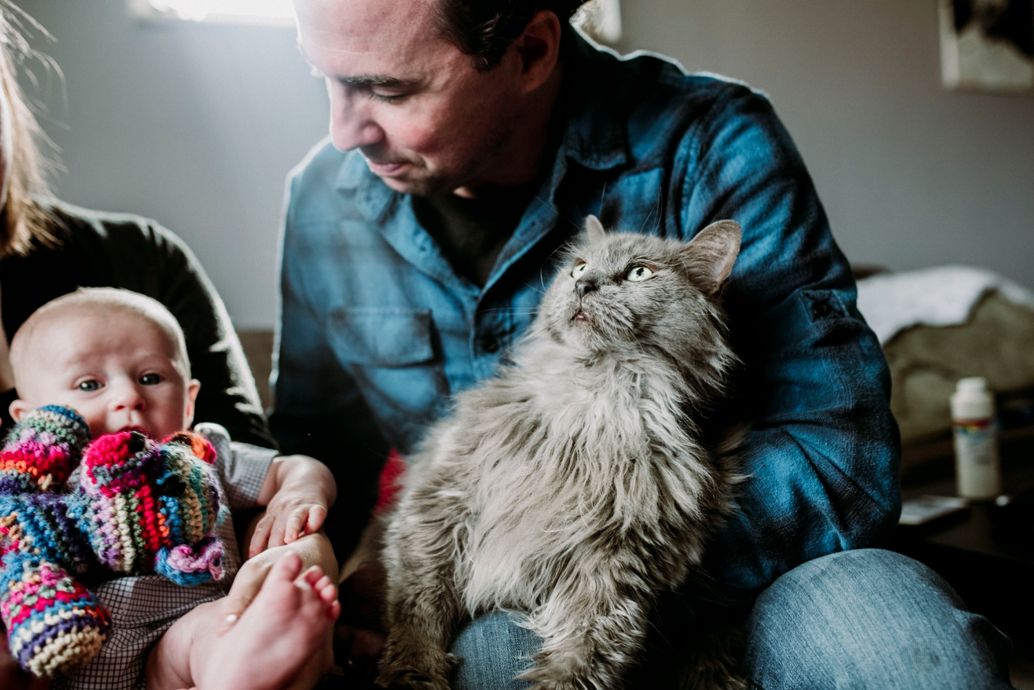 Cats family session