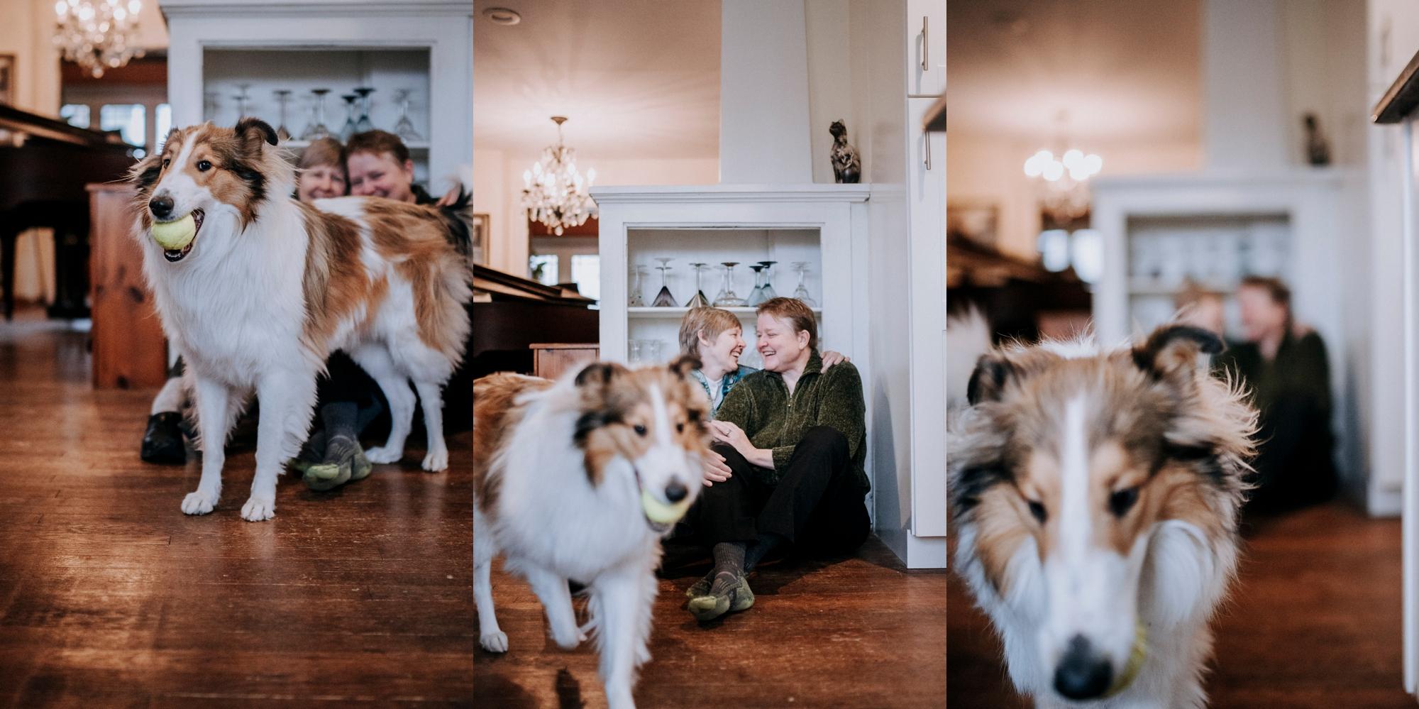 180-Vicky+Sheri-_Pittsburgh-family-photographer.jpg