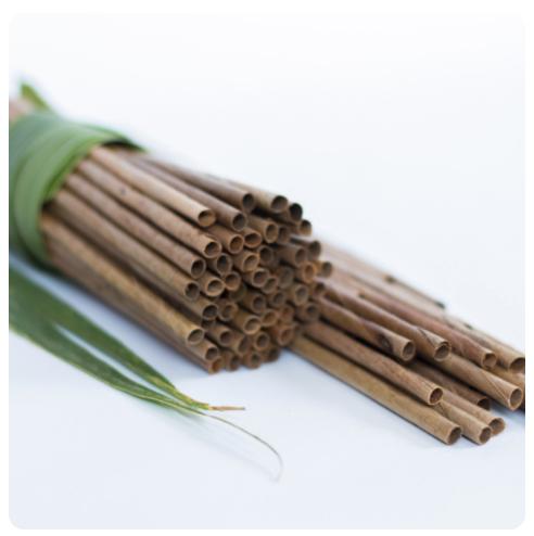 Sugarcane + coconut plates/straws