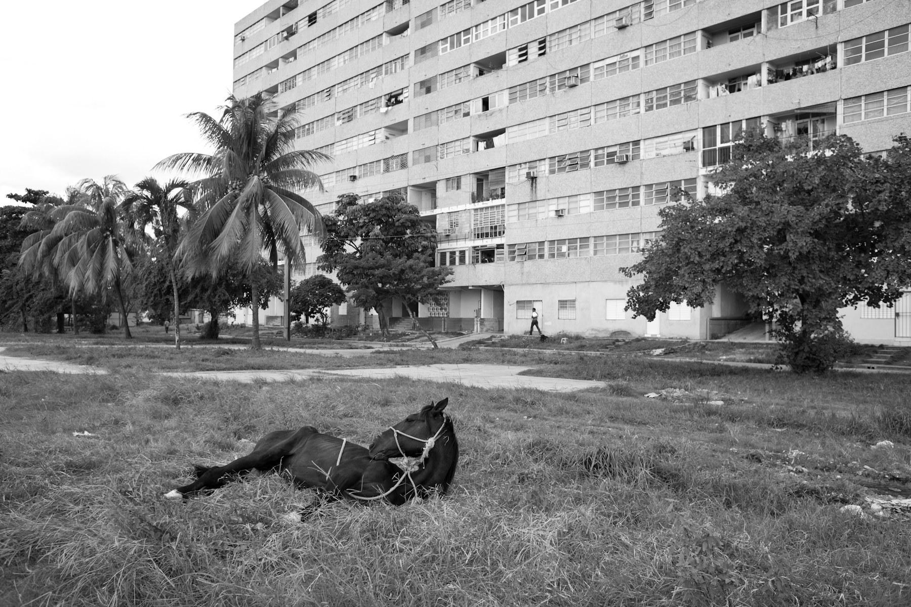 Portfolio_Cuba_Poole_2014_003.JPG