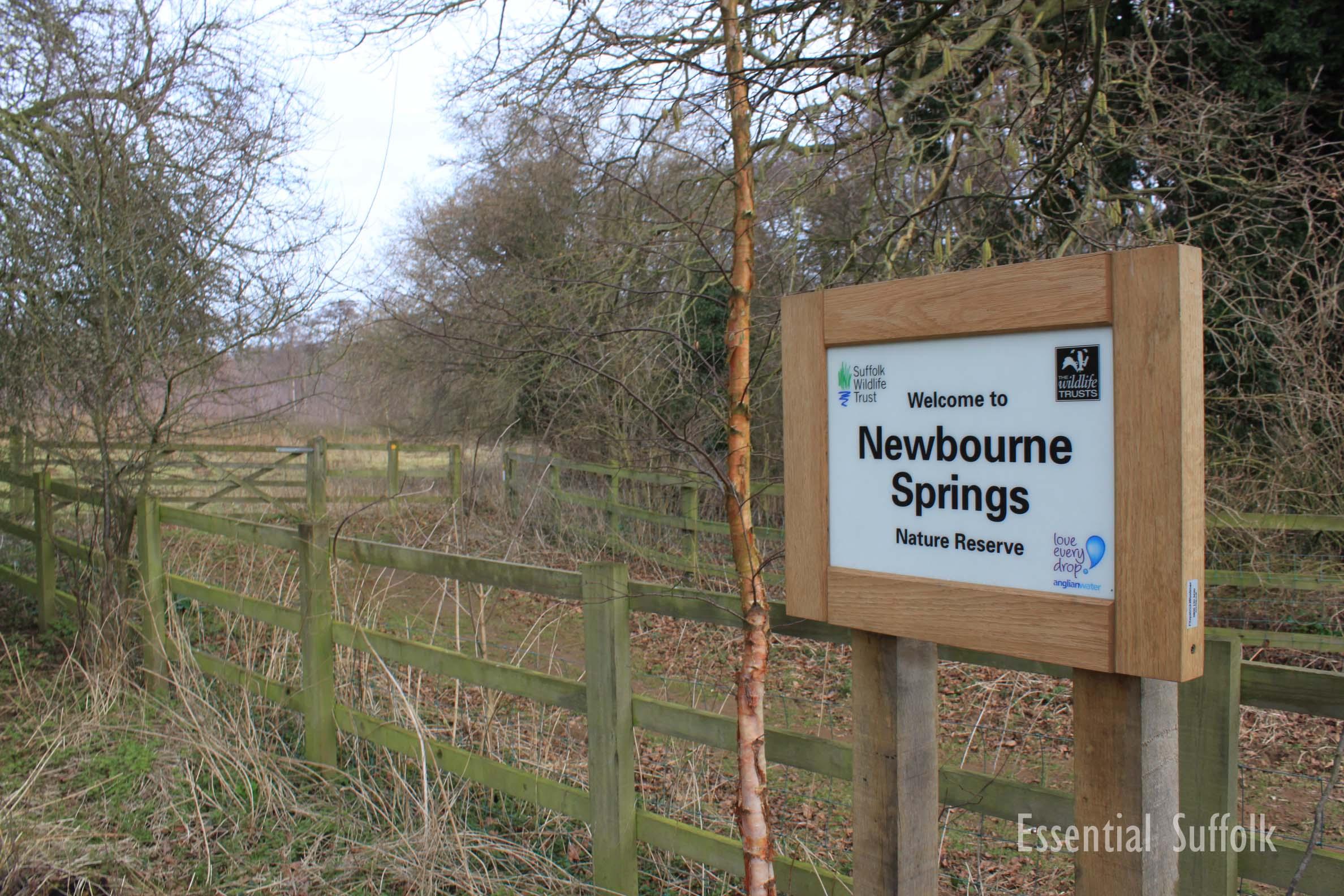Newbourne Dog Walk 2 12.jpg