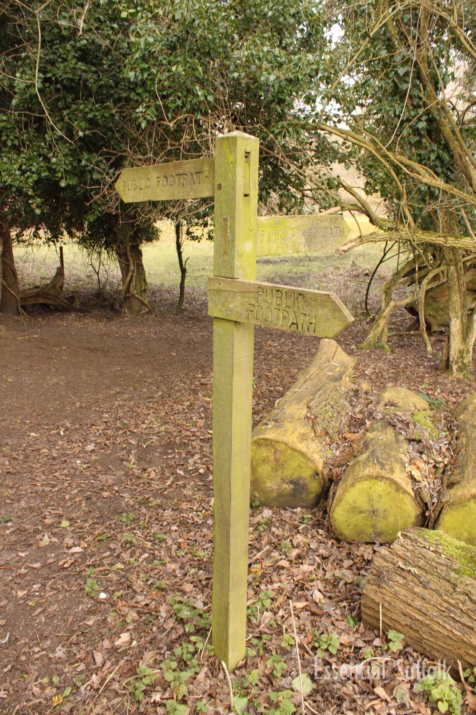 Newbourne Dog Walk 2 15.jpg
