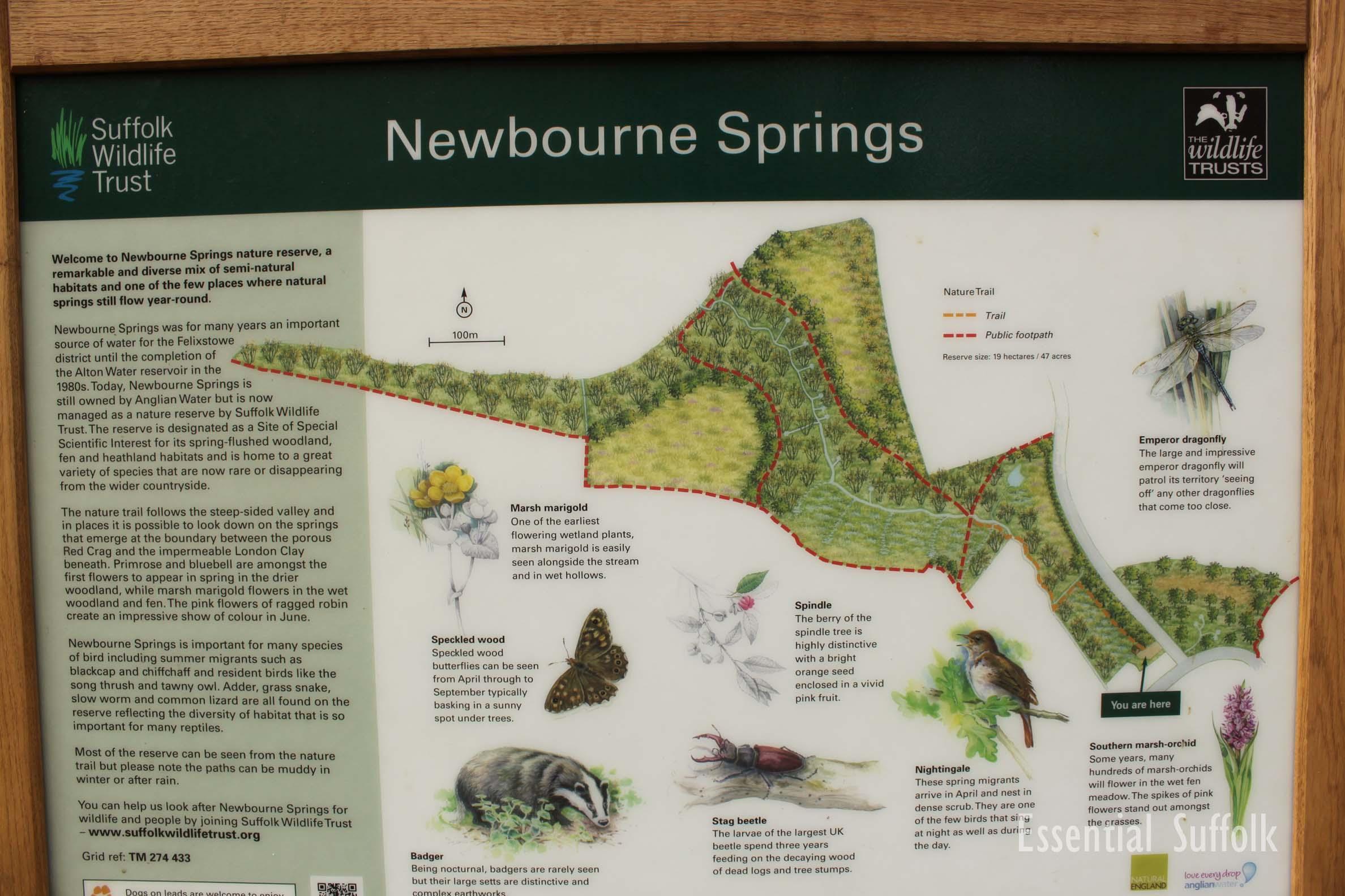 Newbourne Dog Walk 2 16.jpg