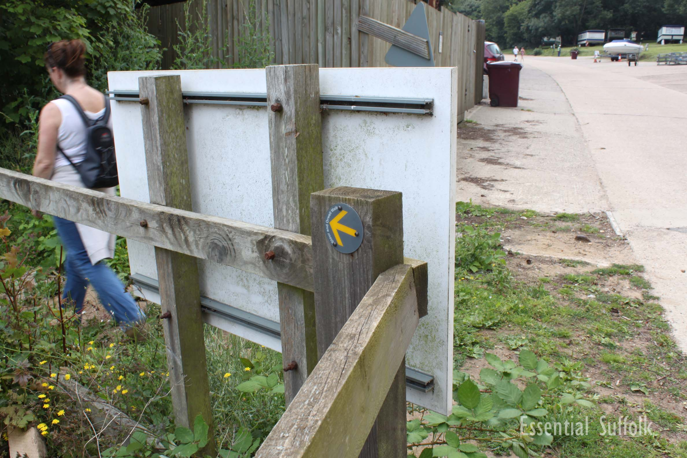Pin Mill Dog Walk 1 11.jpg