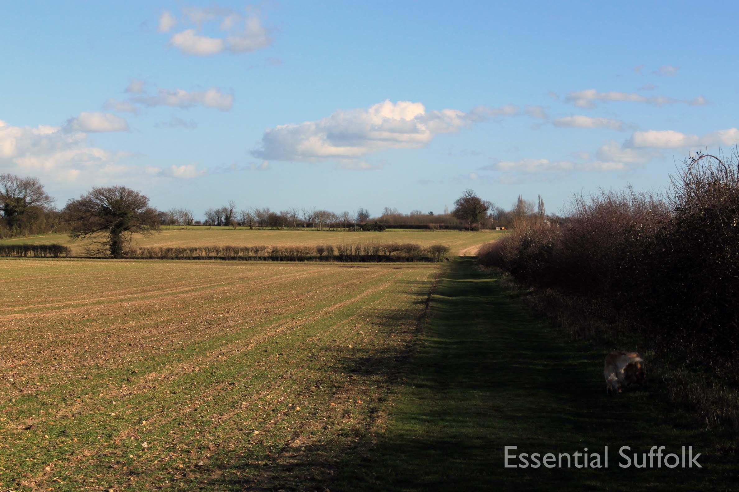 Westerfield Route 2 01.jpg