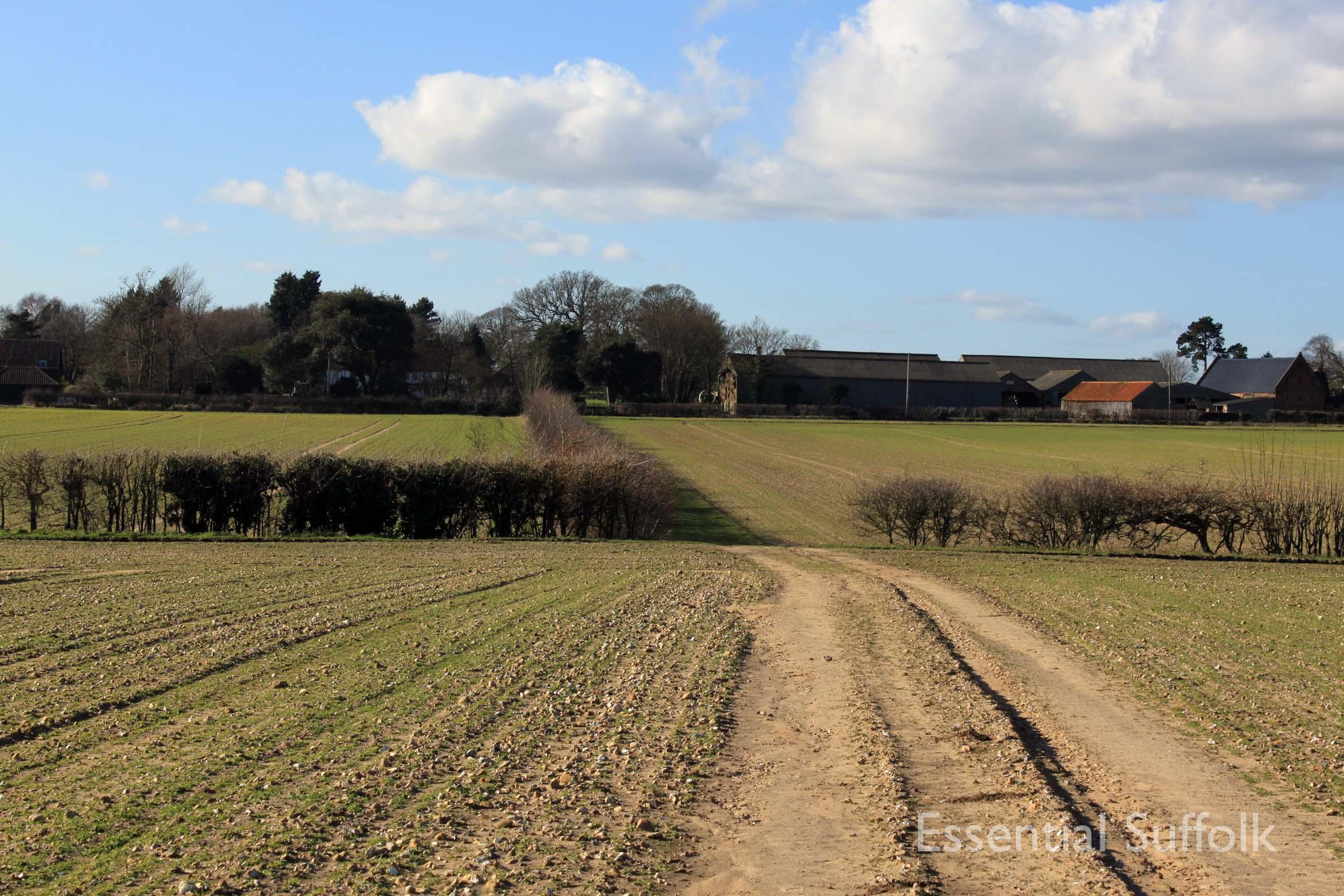 Westerfield Route 2 03.jpg