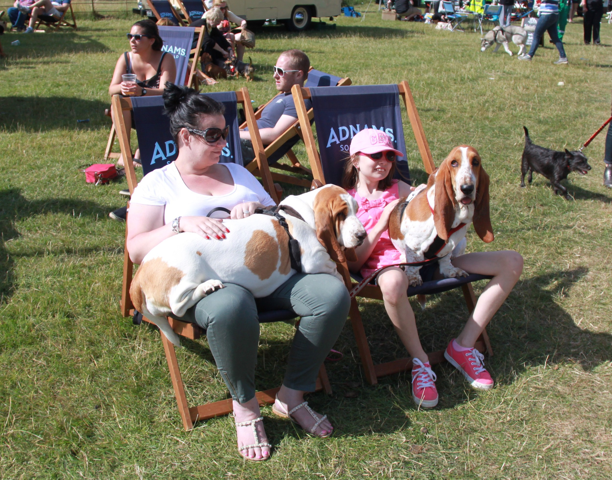 Suffolk Dog Day 2013 699.JPG
