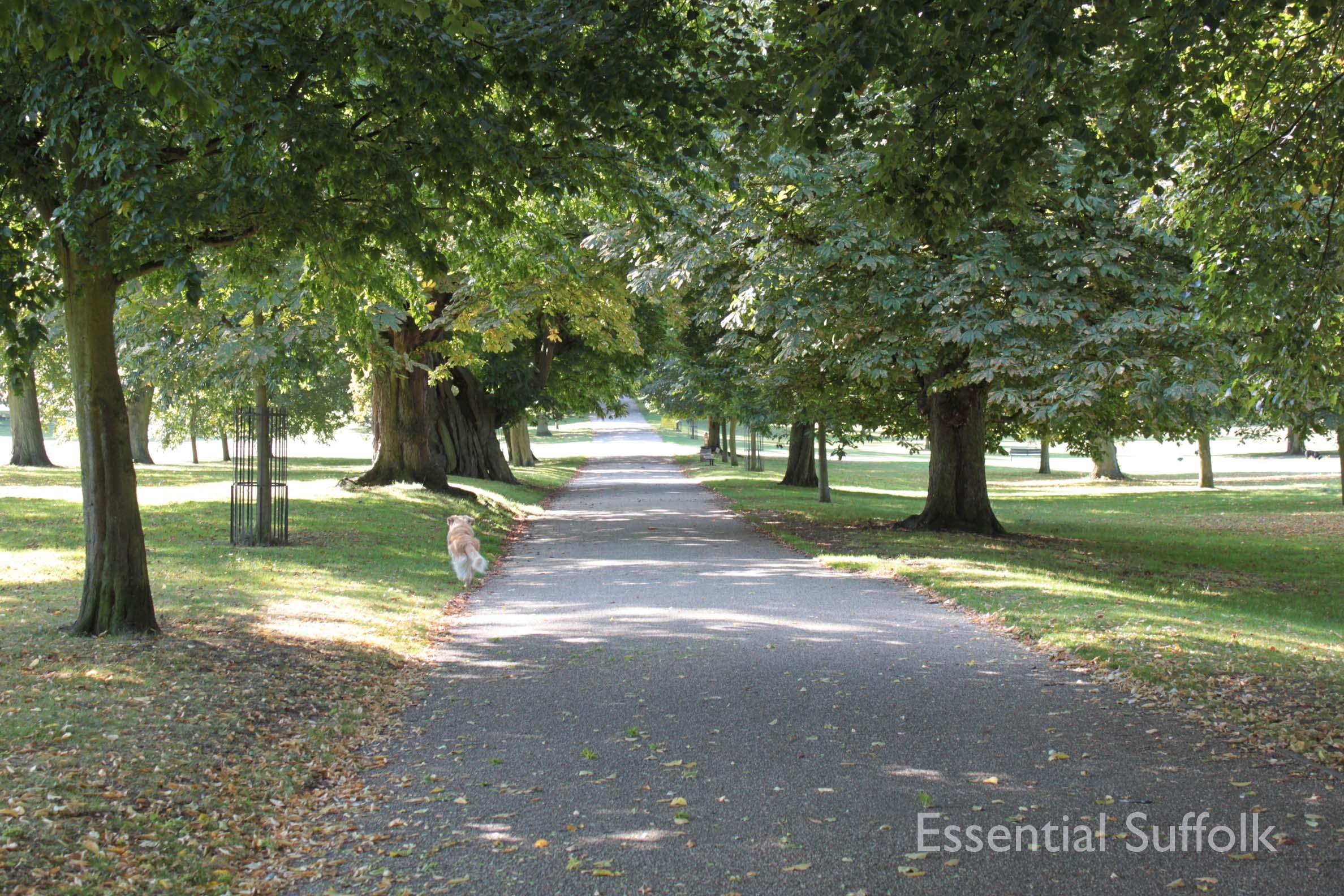 Christchurch Park 001.jpg