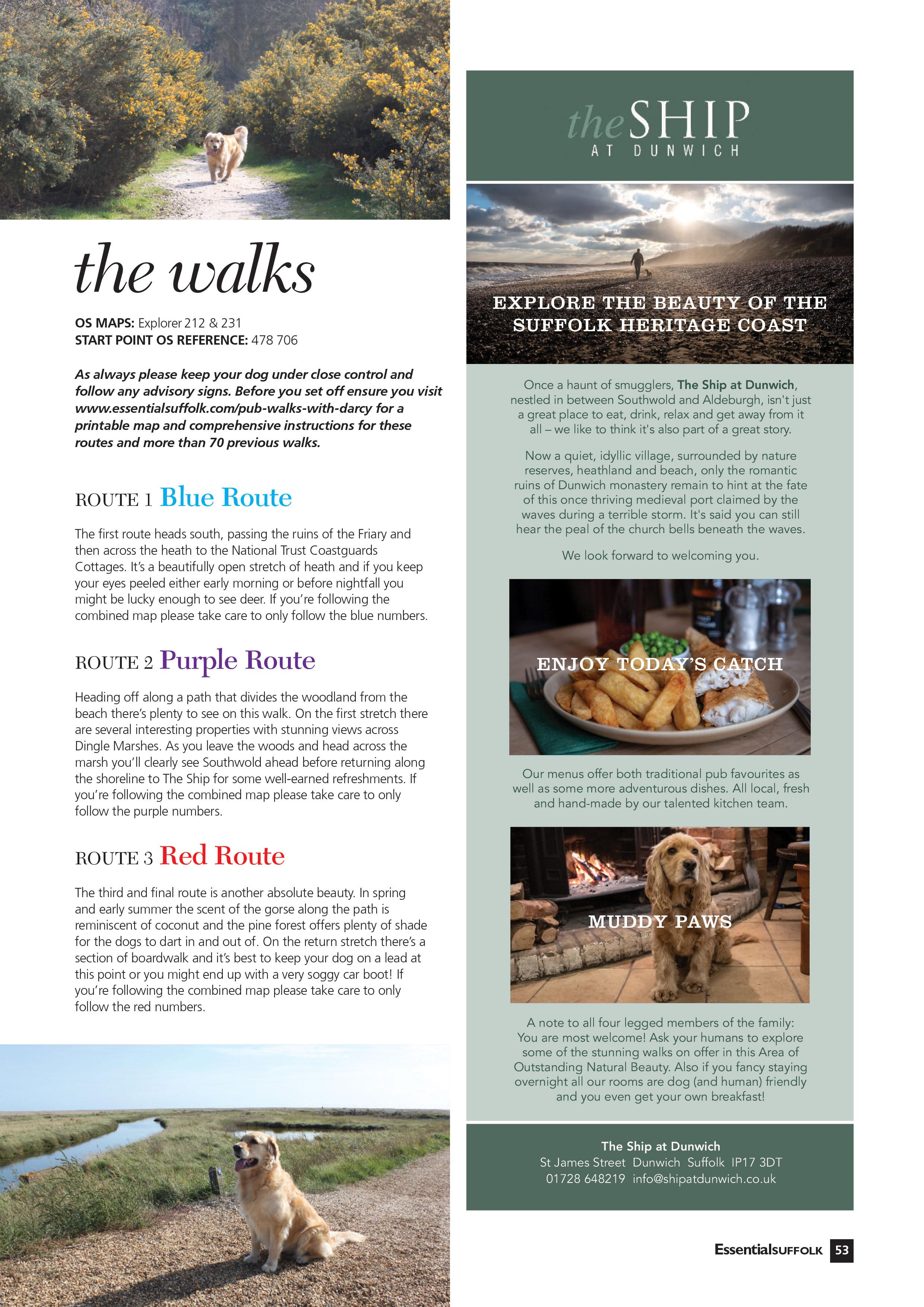 Essential-March-April-dog-walk-2.jpg