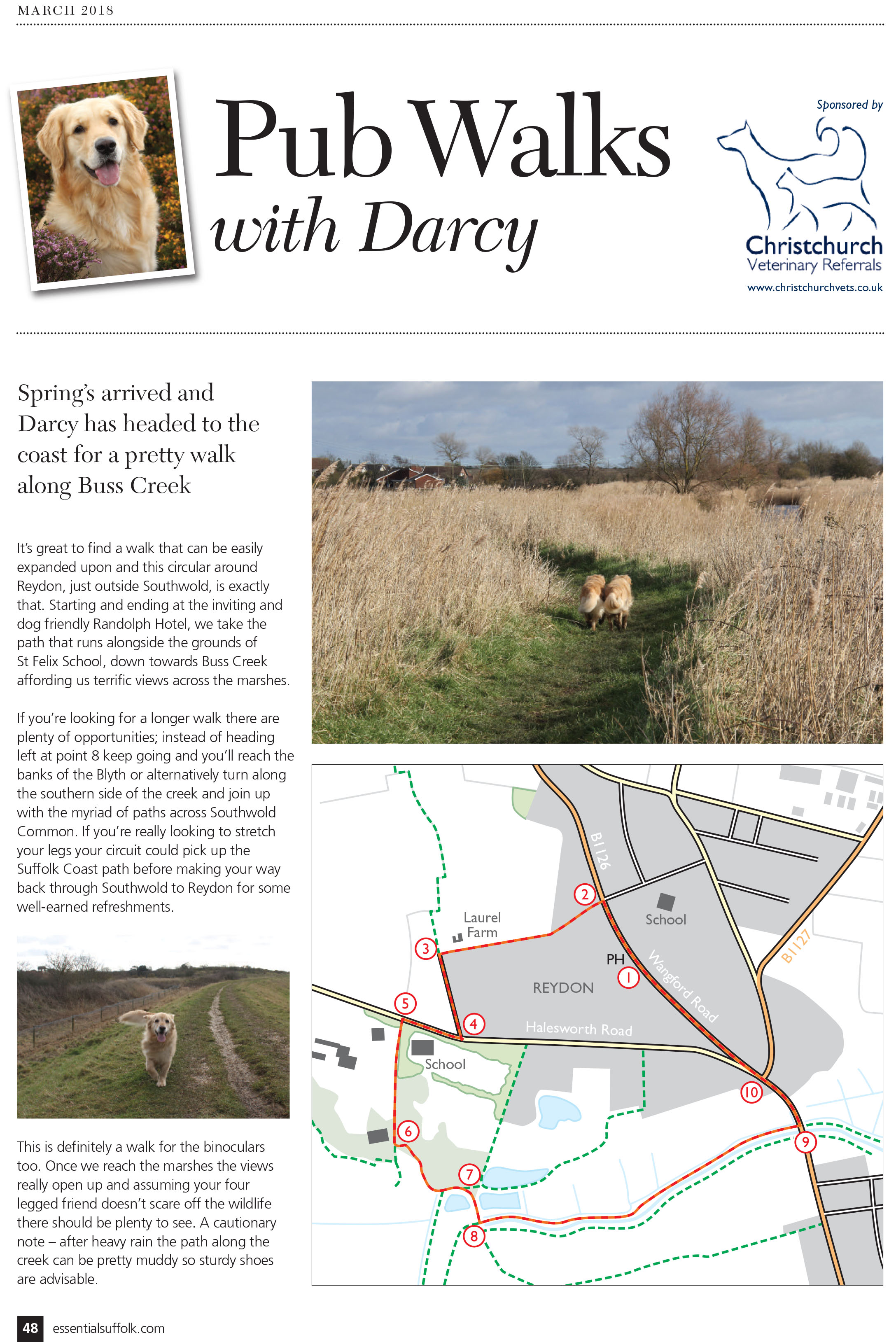 Essential Suffolk Reydon dog walk page 1