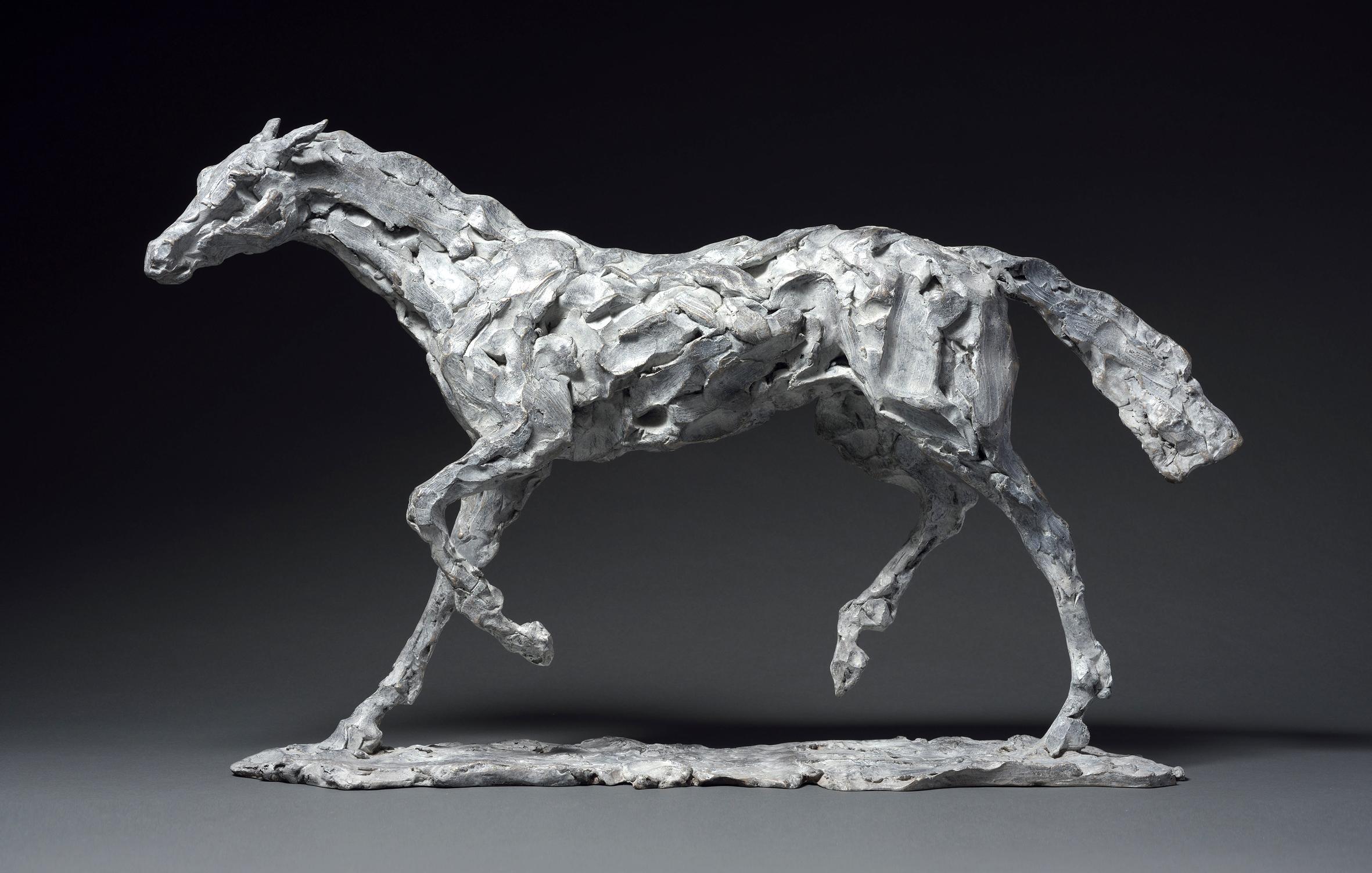 Stuart Anderson Horse study 2017_edited-1.jpg