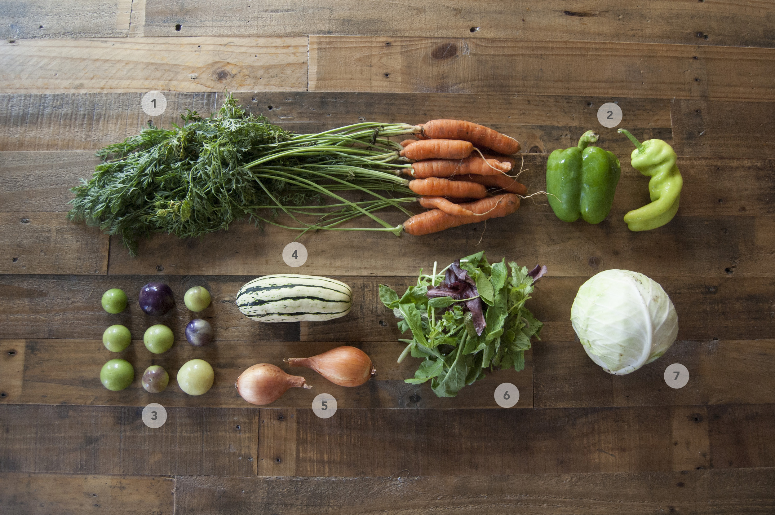 1.  Carrots |2. Bell Peppers  | 3. Tomatillos  | 4. Delicata Squash | 5.  Yellow Onions | 6.  Mixed Mesclun | 7. Kaitlin Cabbage