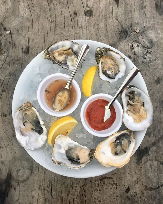 After a long and rainy week, it feels great to sit outside and enjoy oyster happy hour. I'm really getting into this California life 🥰 #coasttoroastgoescoasttocoast #dawsonsontherun