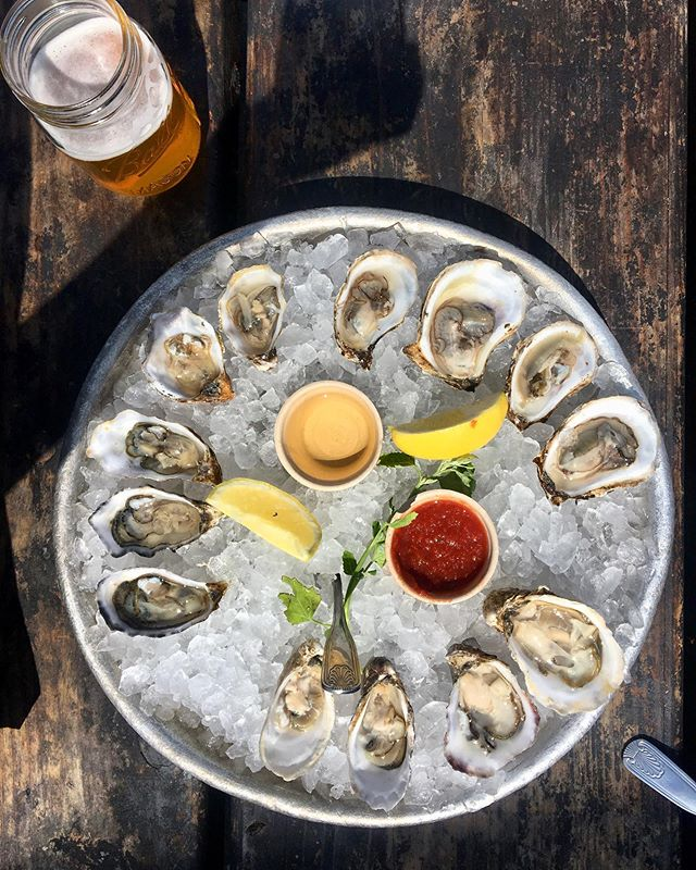 Dreaming of these fresh oysters 😍