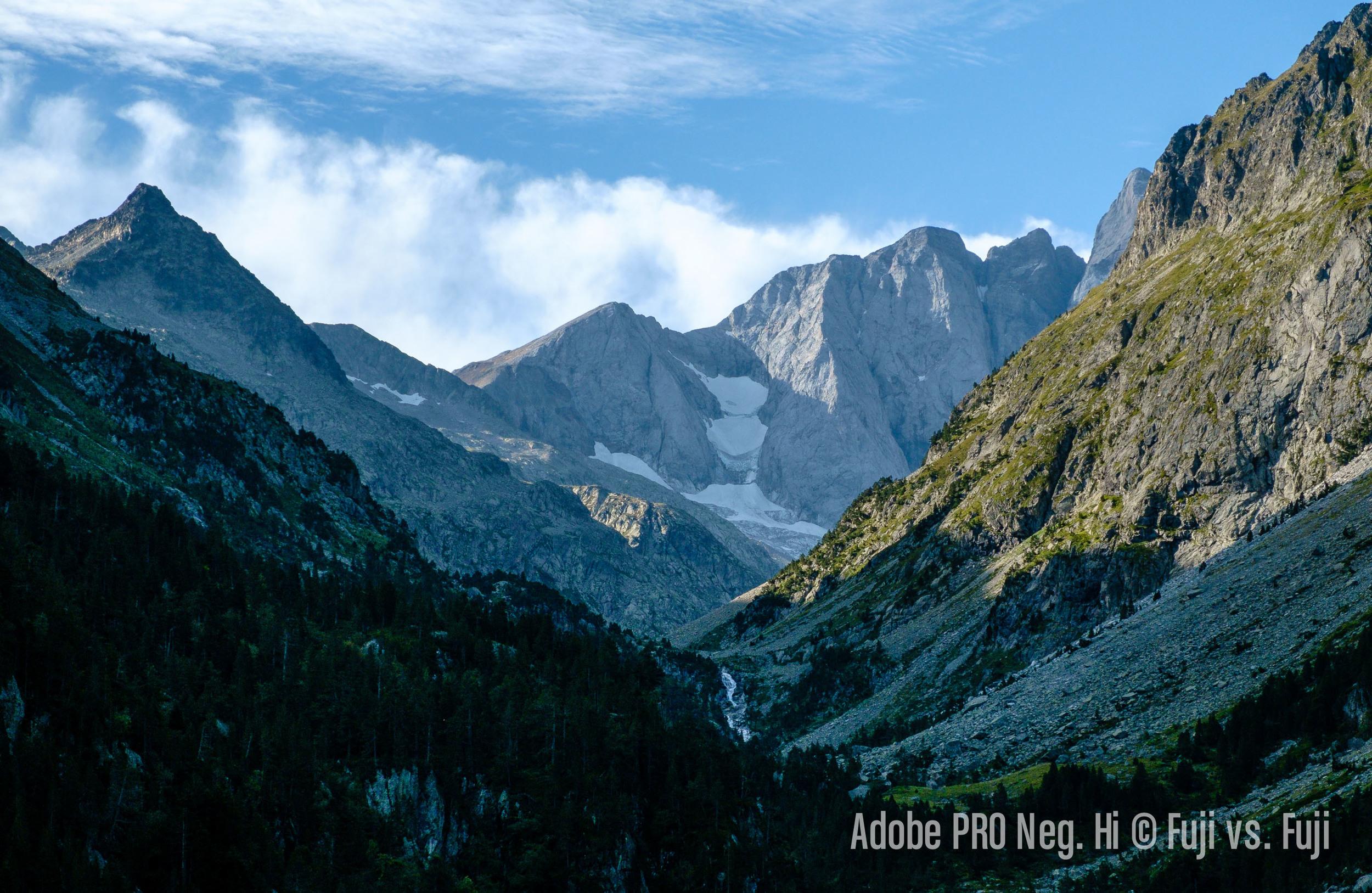 5 Adobe PRO Neg Hi.jpg