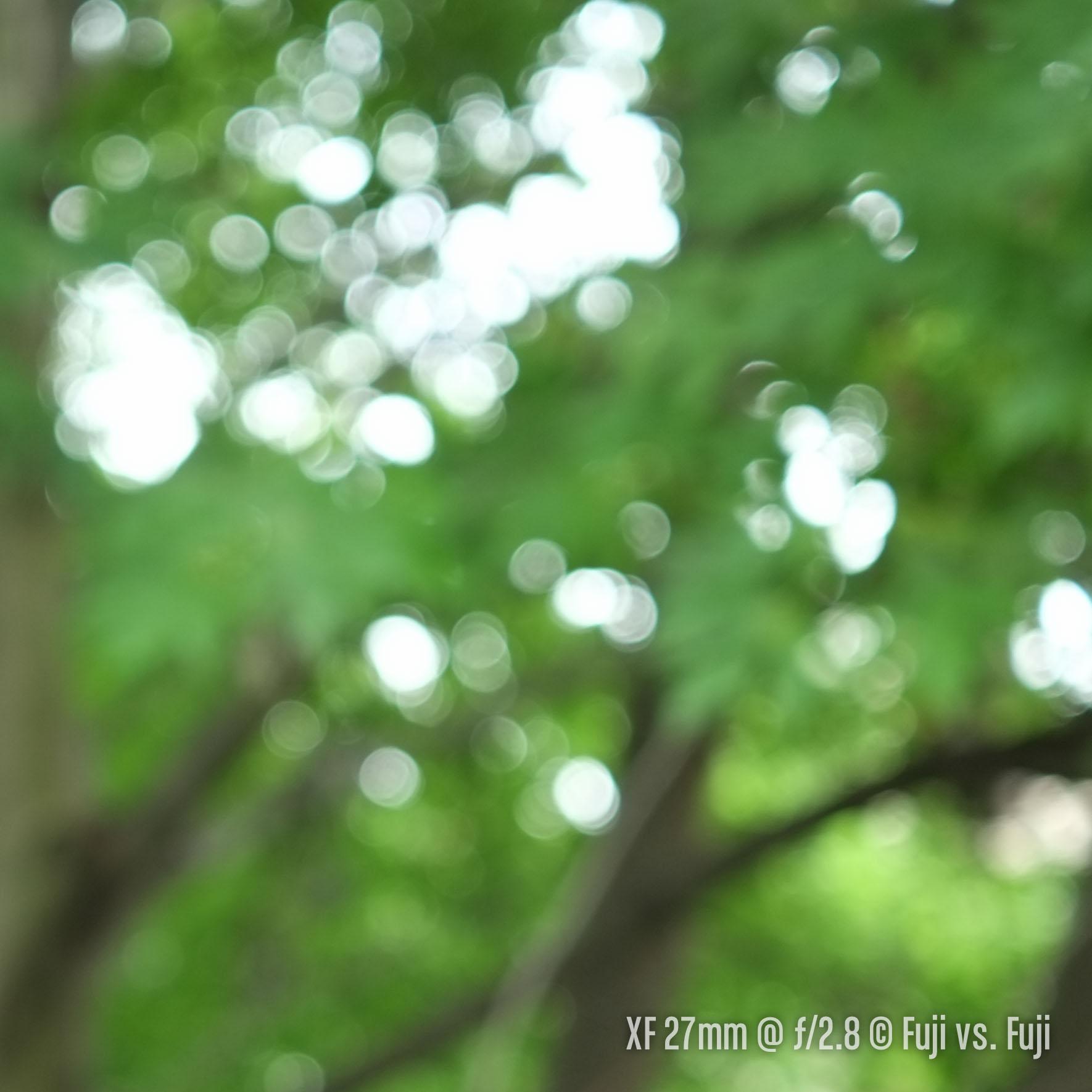 DSCF5878–140804-X-E1–XF27mmF2.8-27 mm-2.jpg