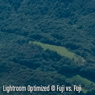 LightroomO5.jpg