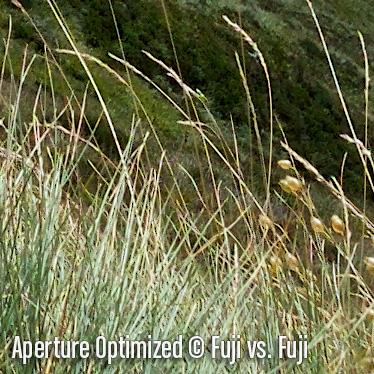 ApertureO6.jpg