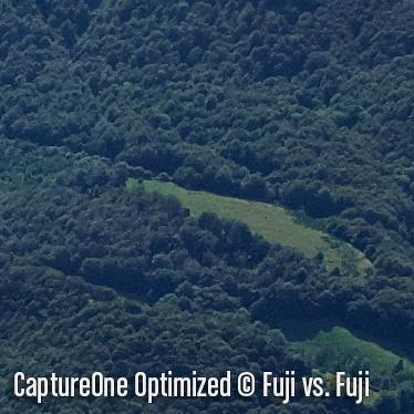 CaptureOneO5.jpg