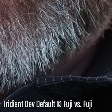 IridientDevD2.jpg