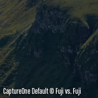 CaptureOneD2.jpg