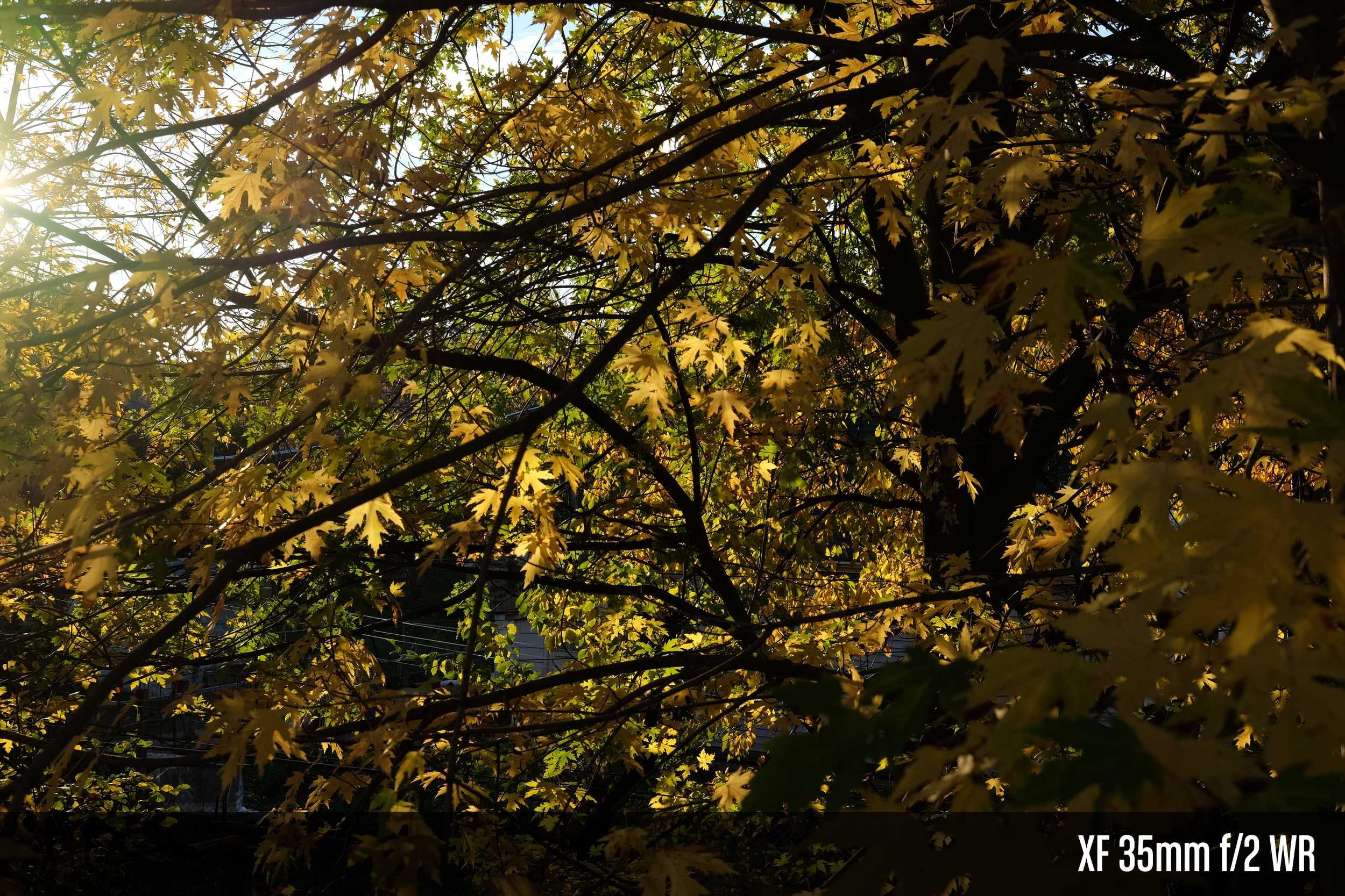 XF 35mm f2 WR.jpg