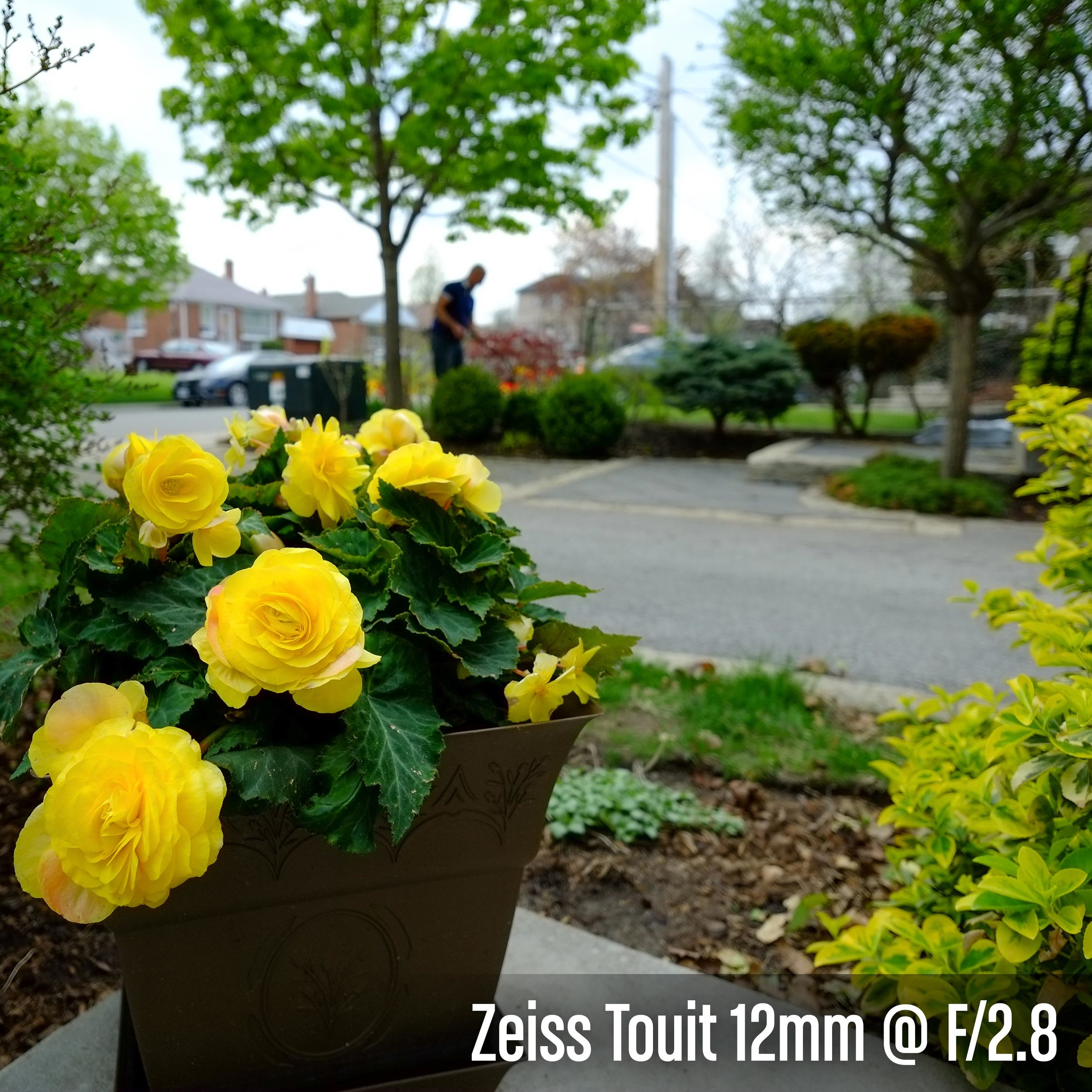 Zeiss Touit 12mm @ F_2.8.jpg