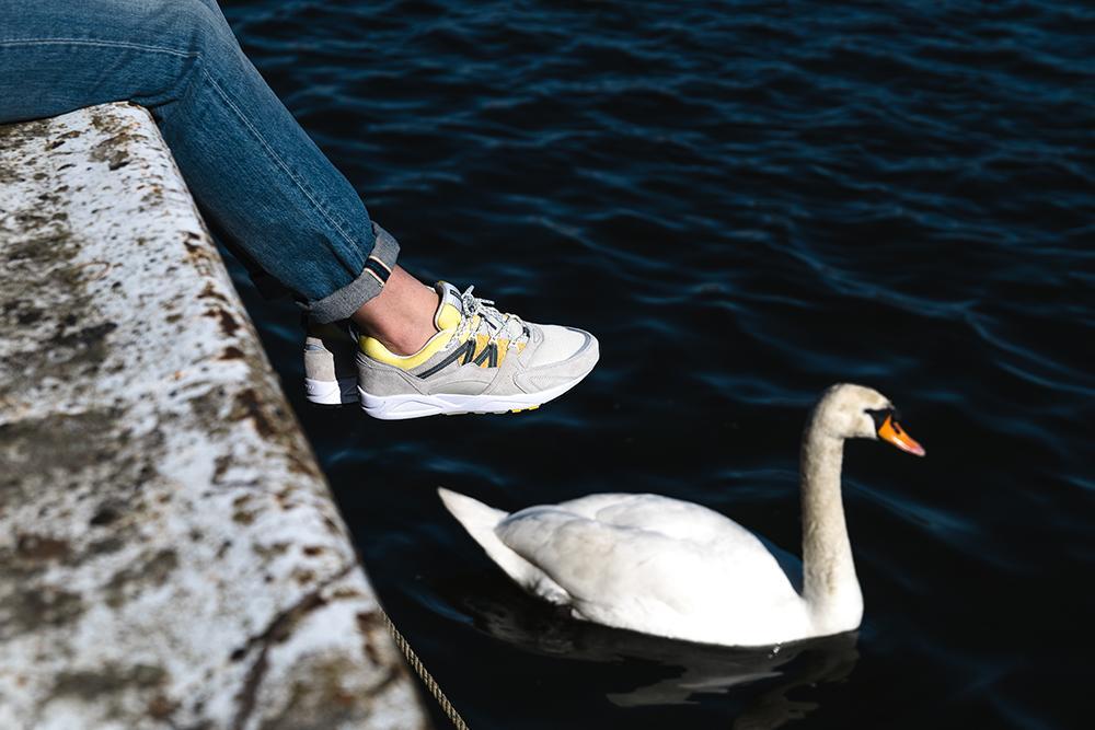 Mood_Swan_F804033_3.jpg