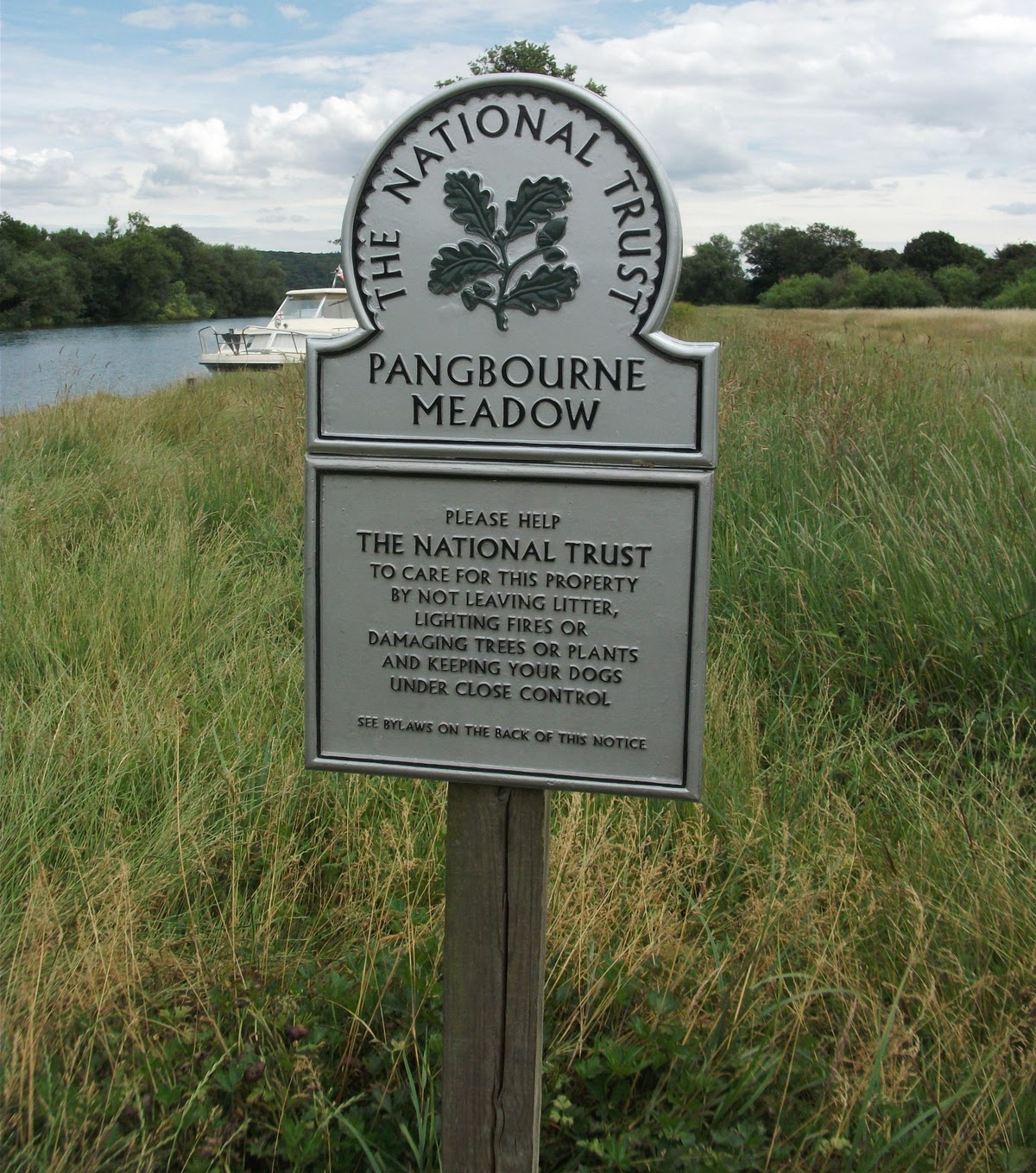 pangbourne meadow.jpg
