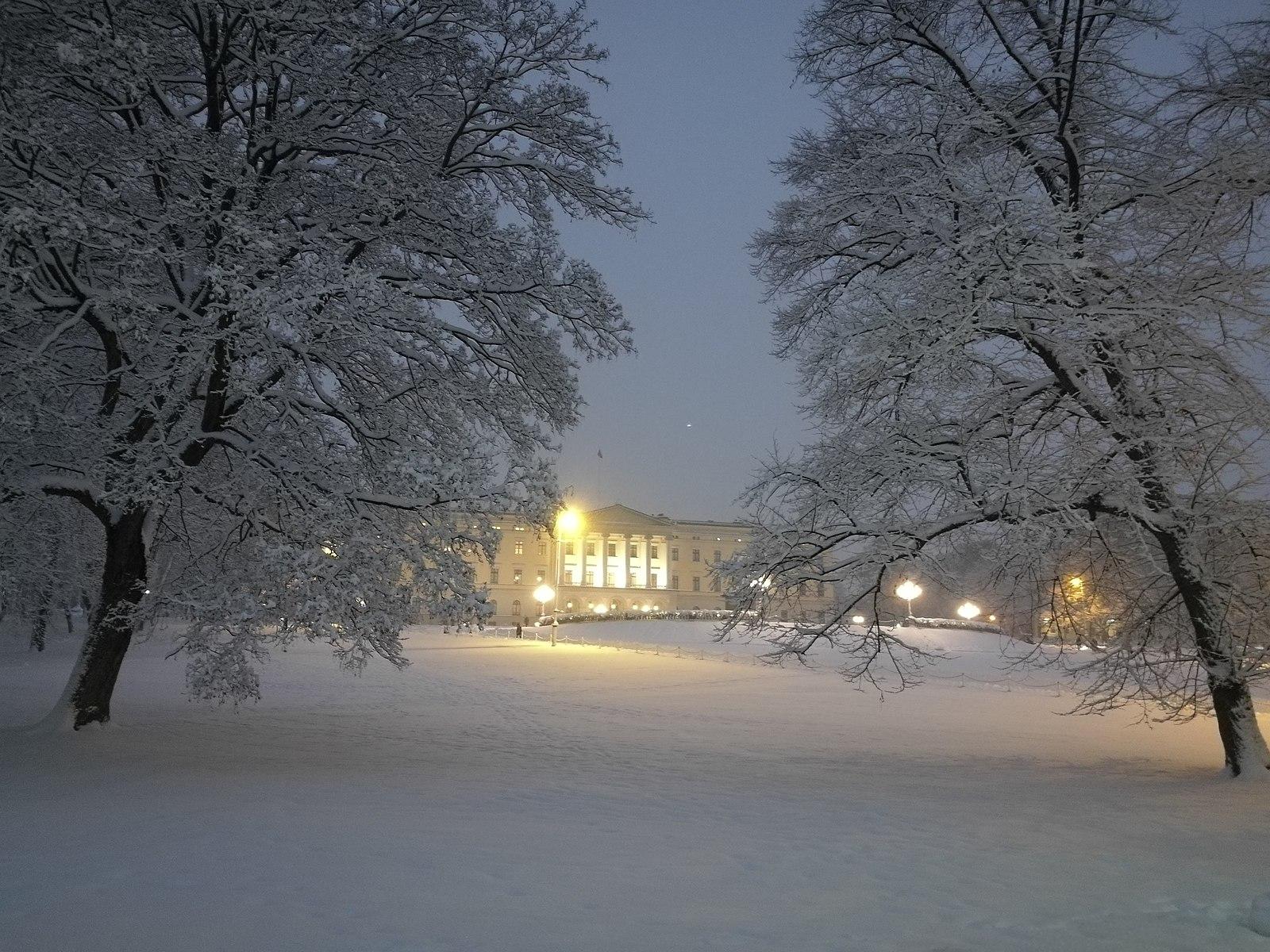 Slottet en vinternatt. Fotograf: Alena Pecherskaia