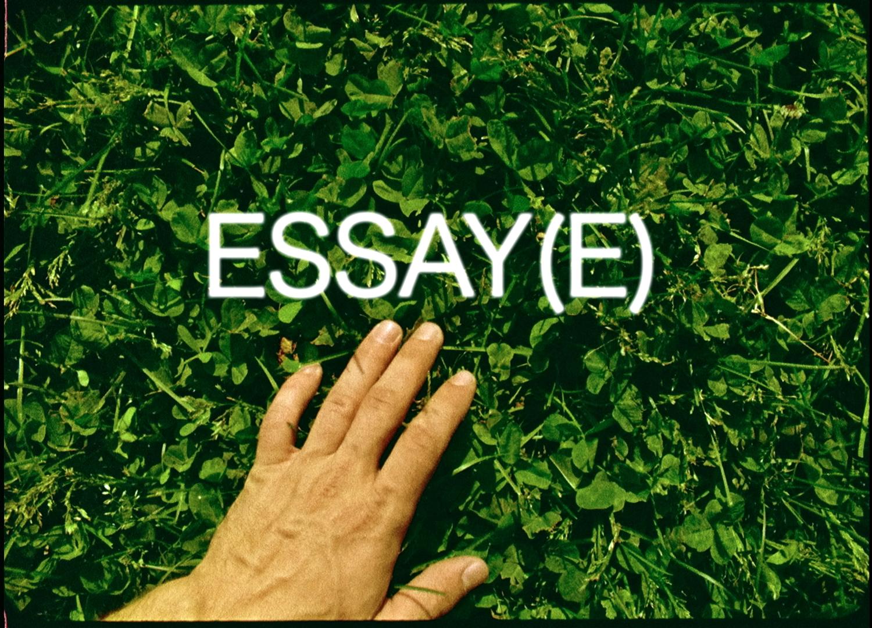 essay4.jpg