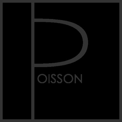 LOGO_P_oisson_2018.png